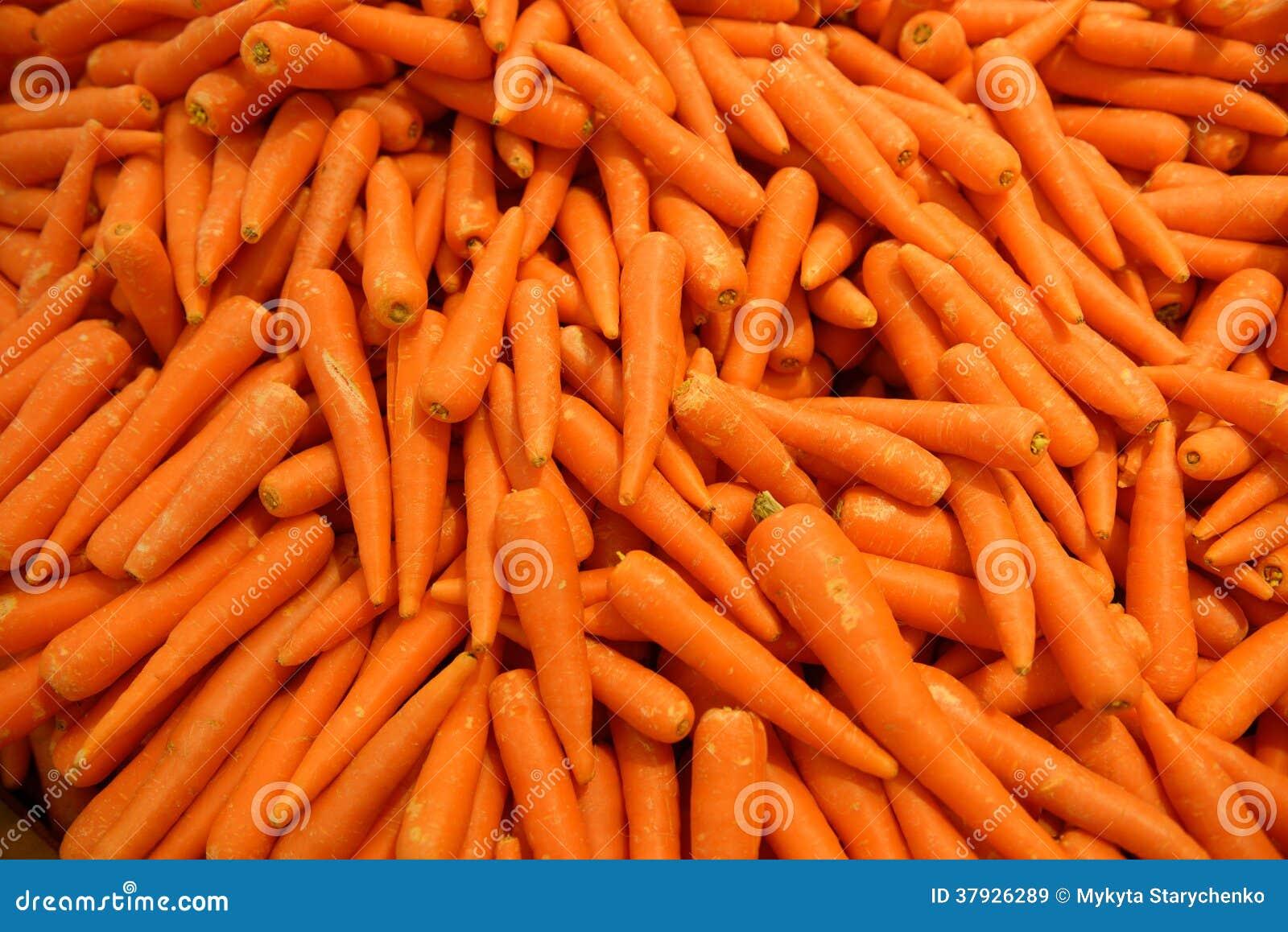 Предпосылка моркови