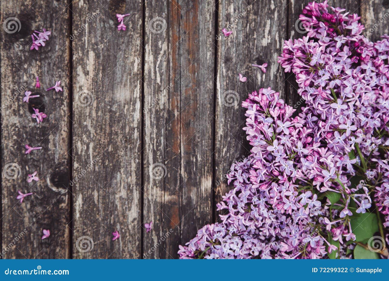 Download Предпосылка дня матери с цветками сирени Стоковое Фото - изображение насчитывающей природа, марш: 72299322