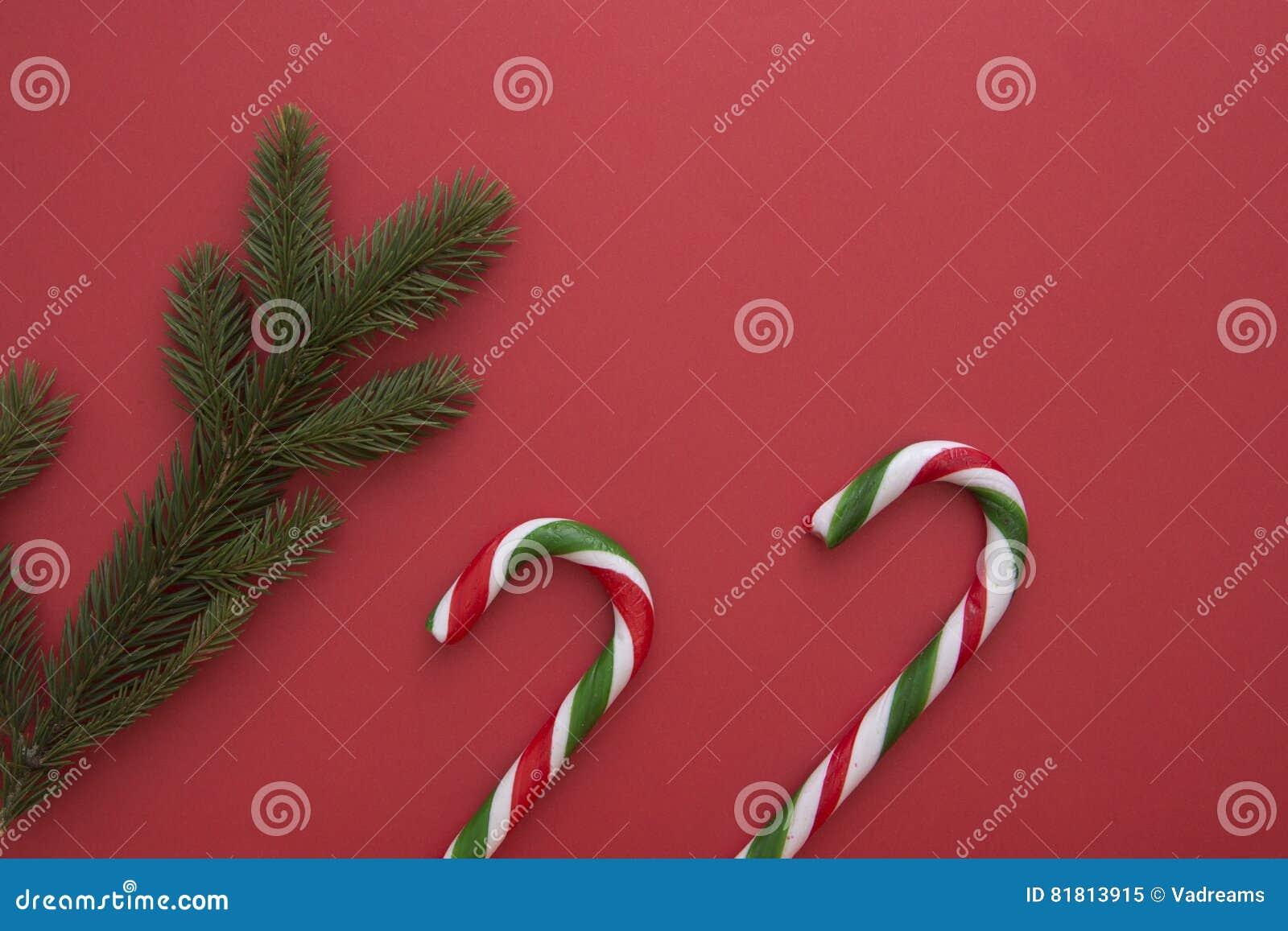 Предпосылка рождества с twings ели и тросточками конфеты на красном цвете Взгляд сверху, плоское положение Скопируйте космос для
