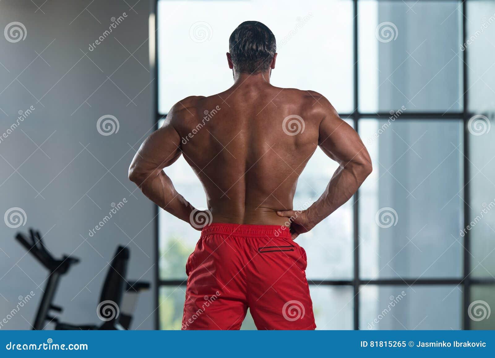 Представление задних мышц мышечного человека изгибая