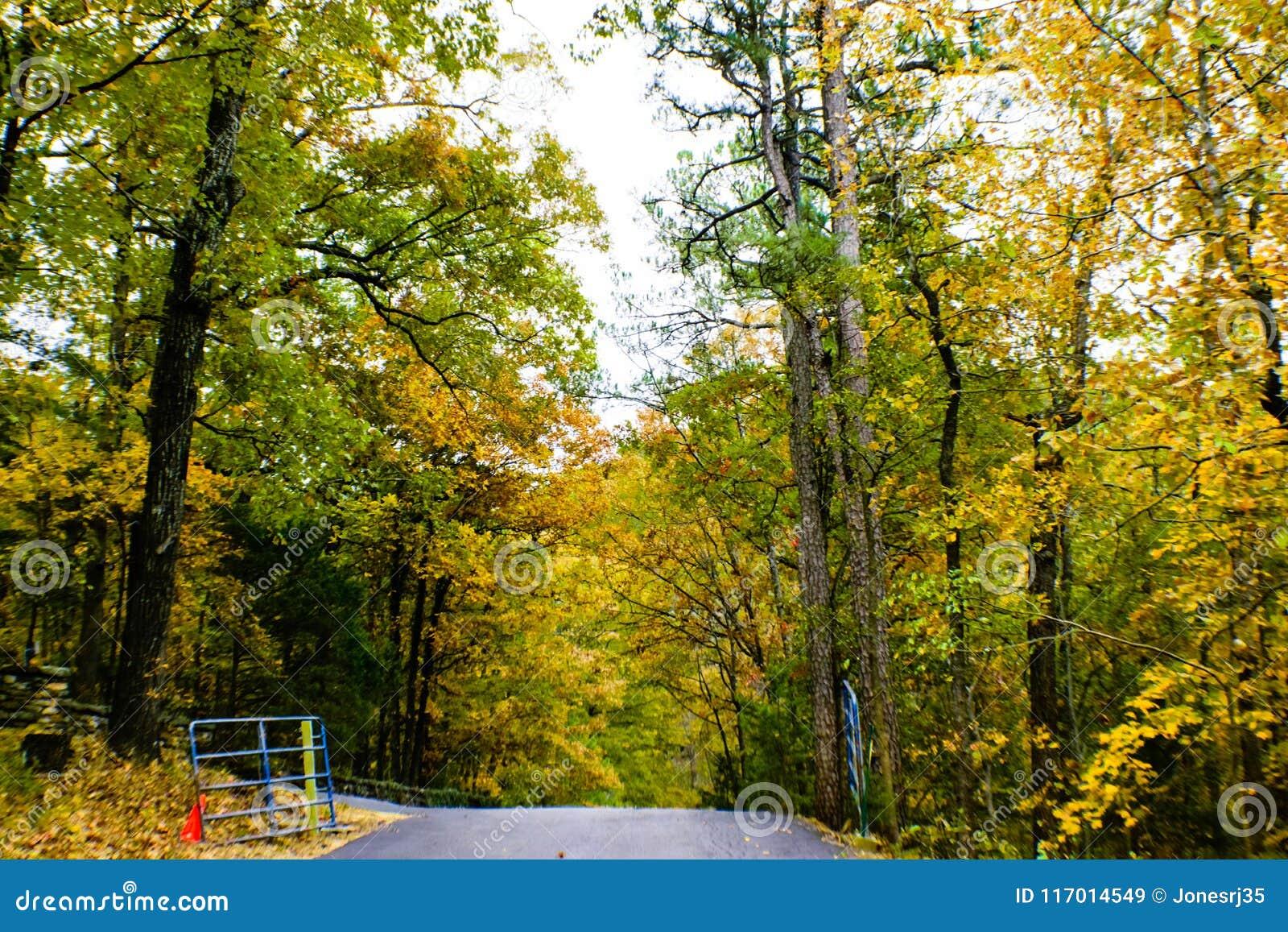 Привод горы Ozark осенью