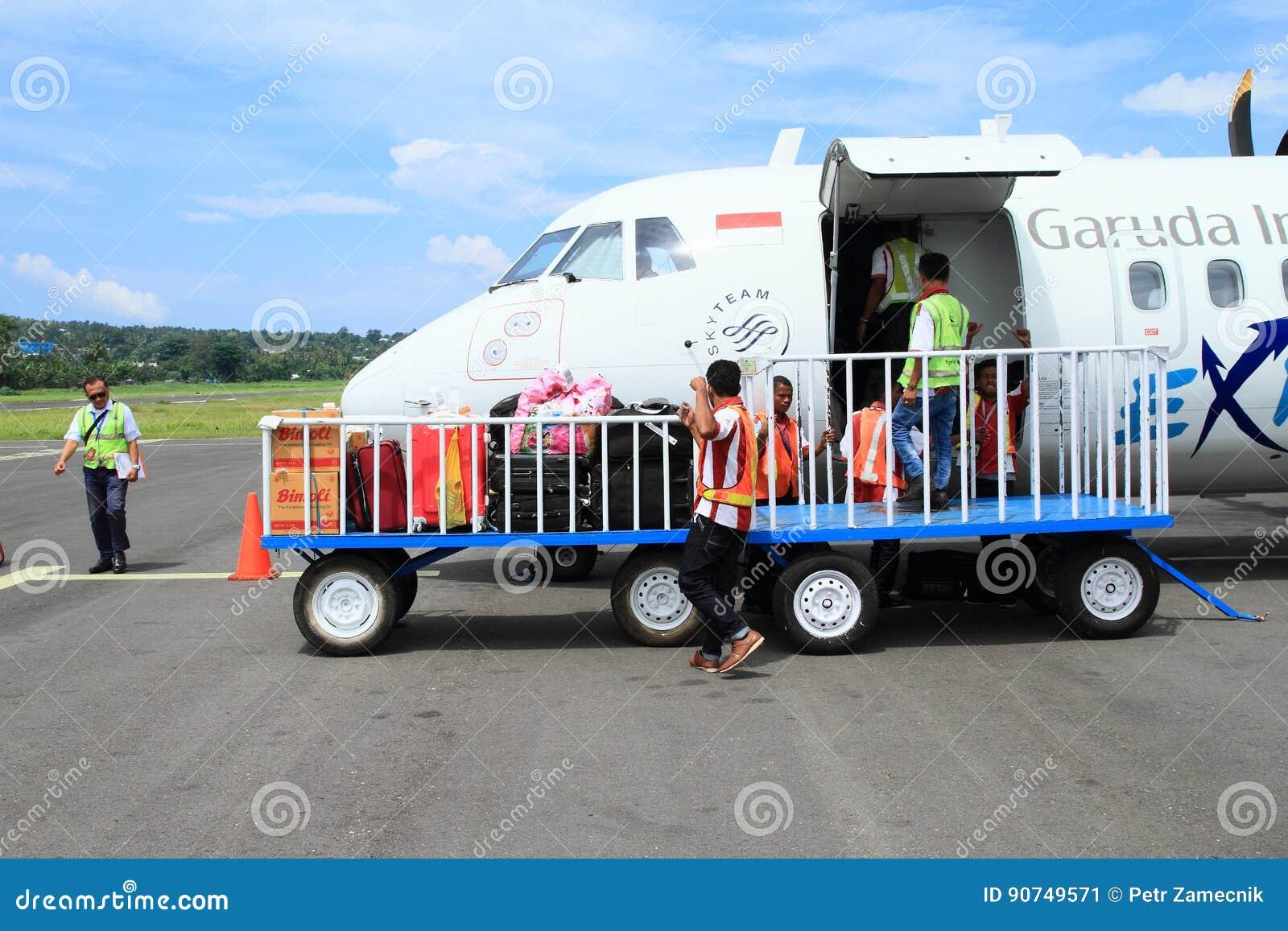 Принимающ багаж от самолета исследуйте на авиапорте
