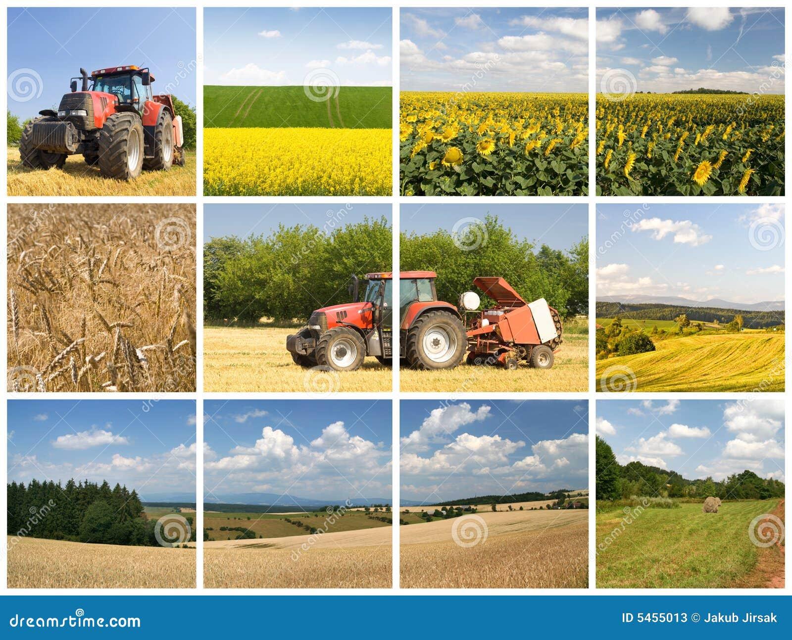 принципиальная схема земледелия