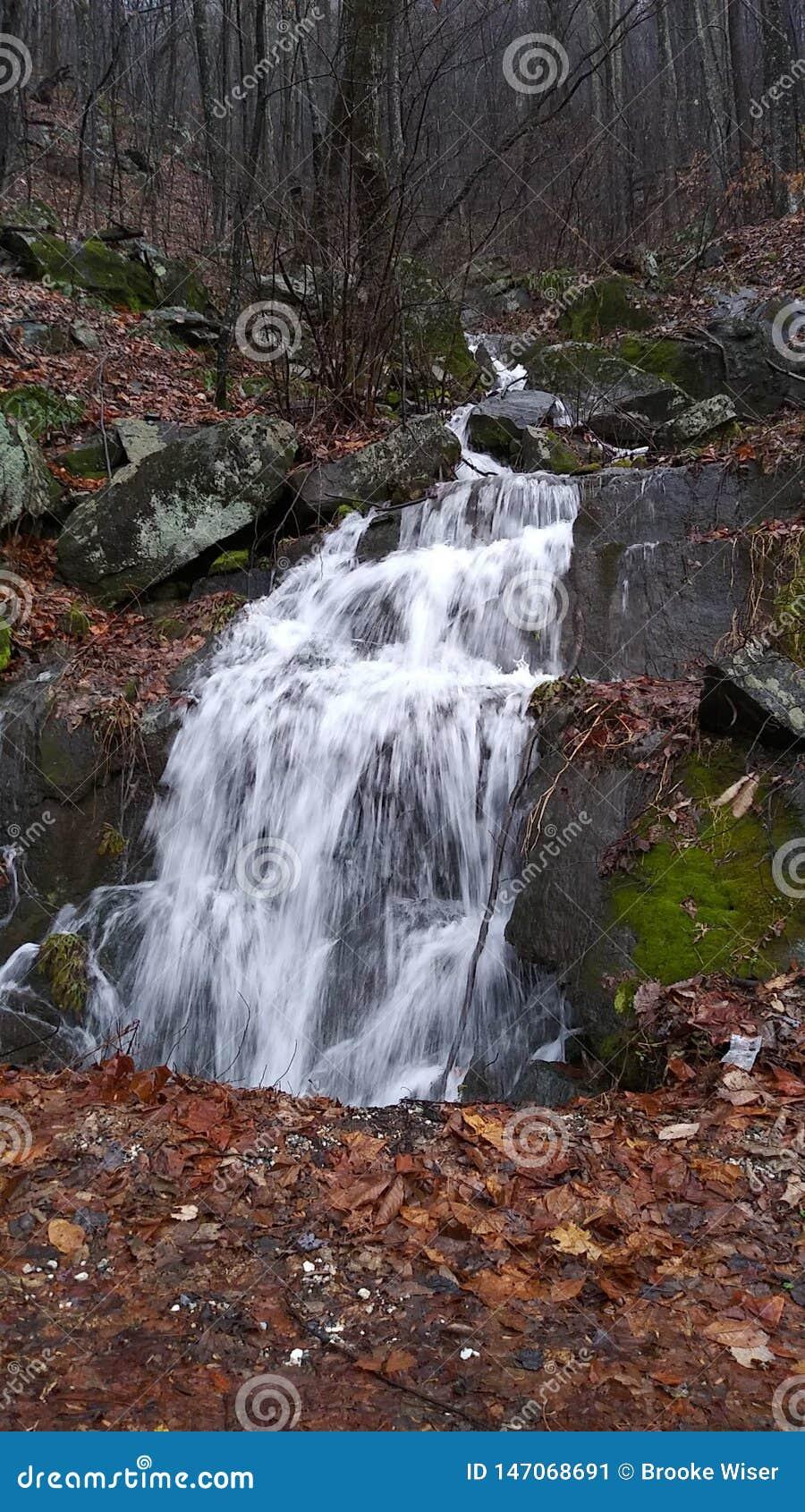Природа, вне как раз ежедневной красоты мы don& x27; внимание оплаты t к