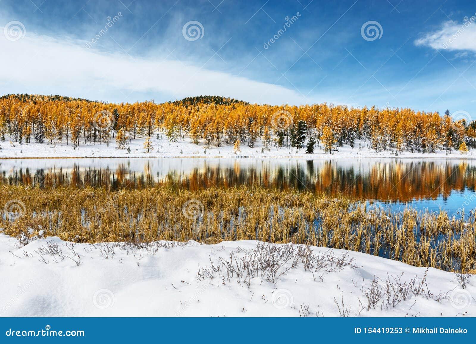 Природа осени с красочными деревьями отраженными в озере горы