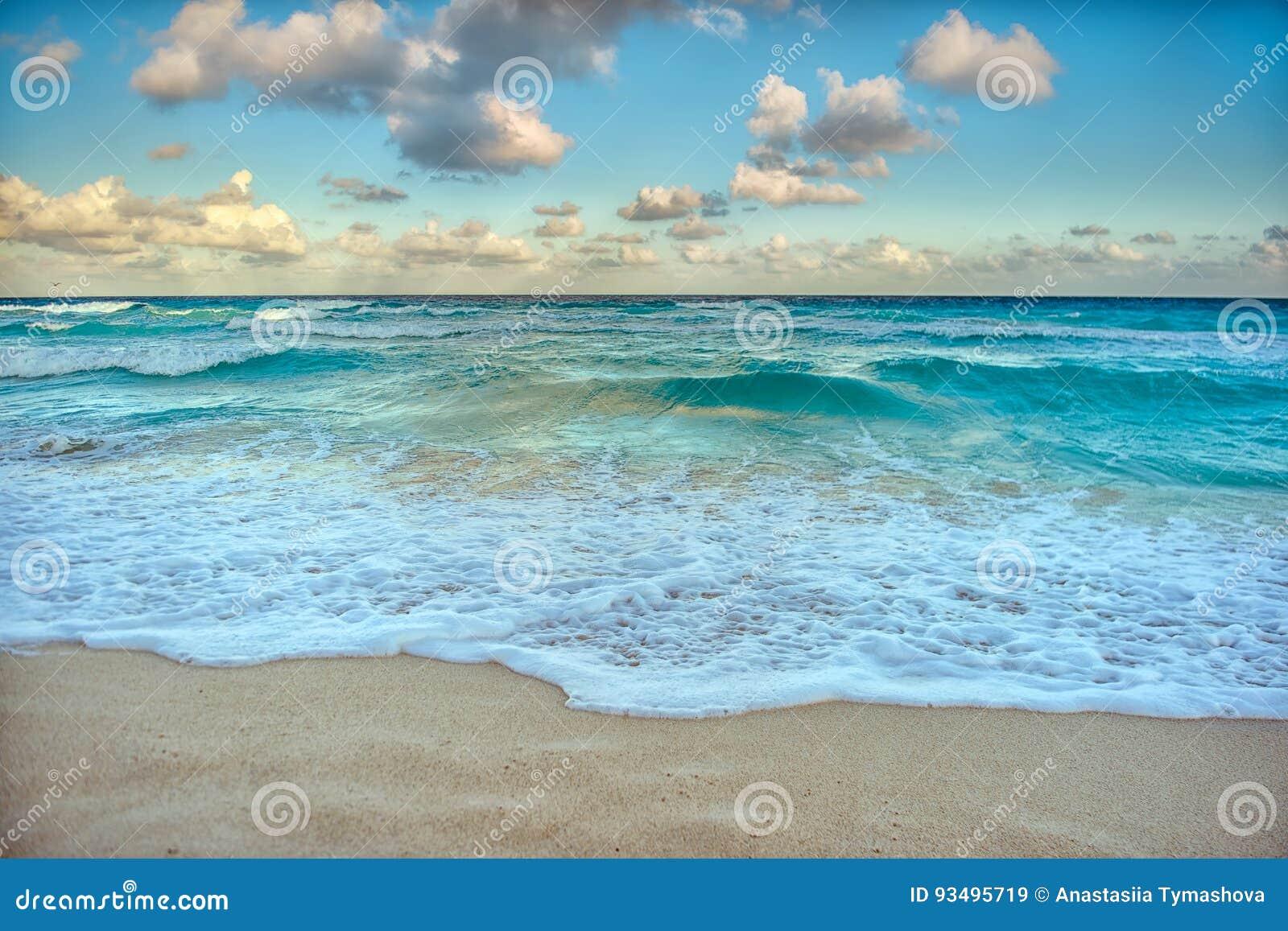 Природа, цапля и лето рая на тропическом пляже