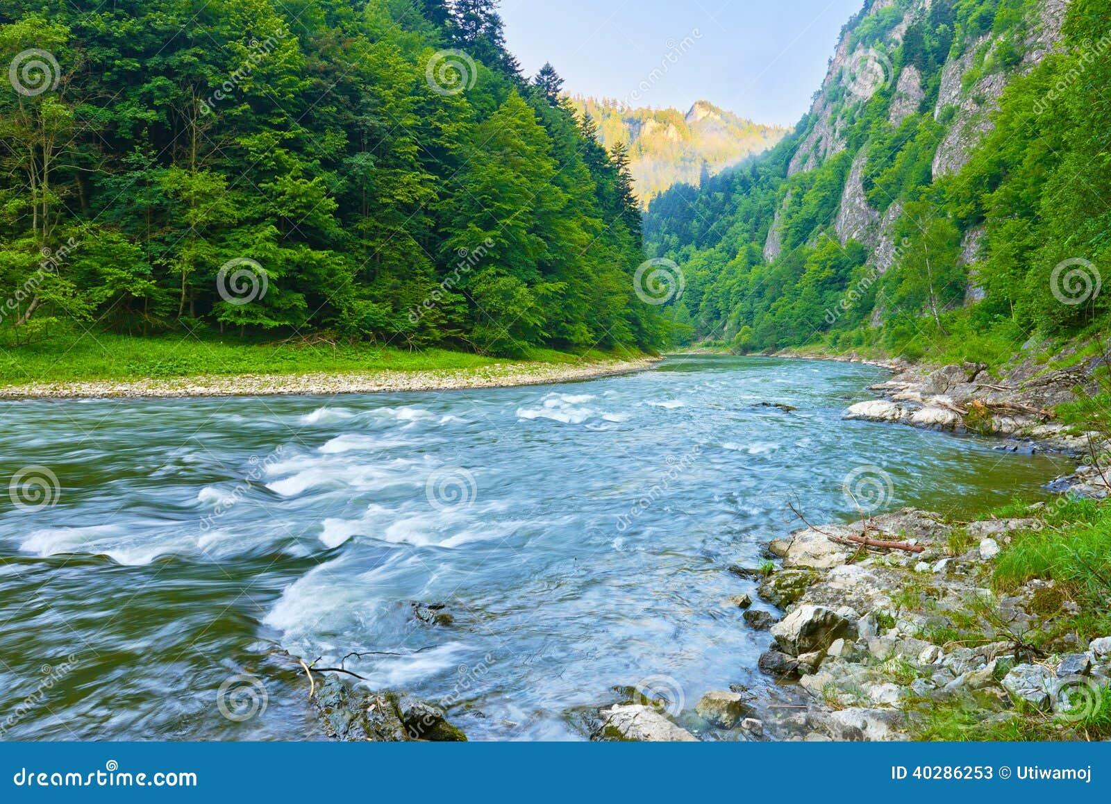 Природный заповедник ущелья реки Dunajec.
