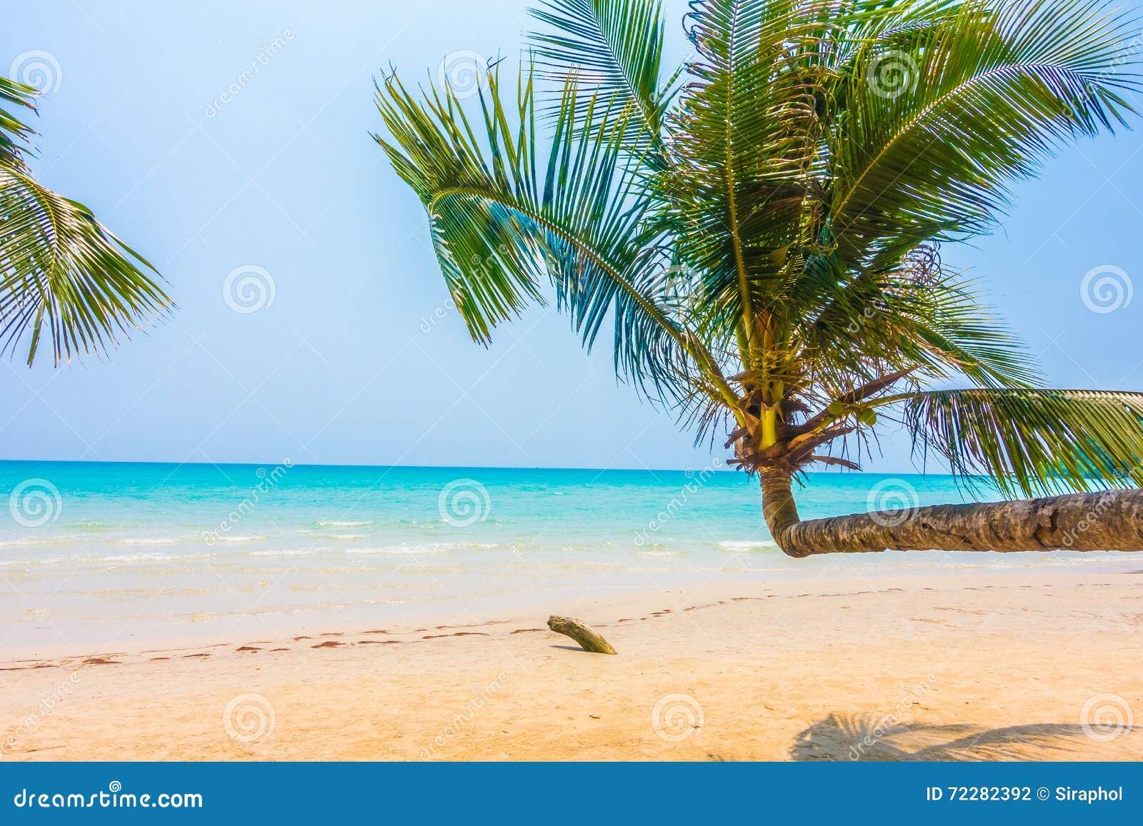 Download пристаньте море к берегу стоковое фото. изображение насчитывающей напольно - 72282392