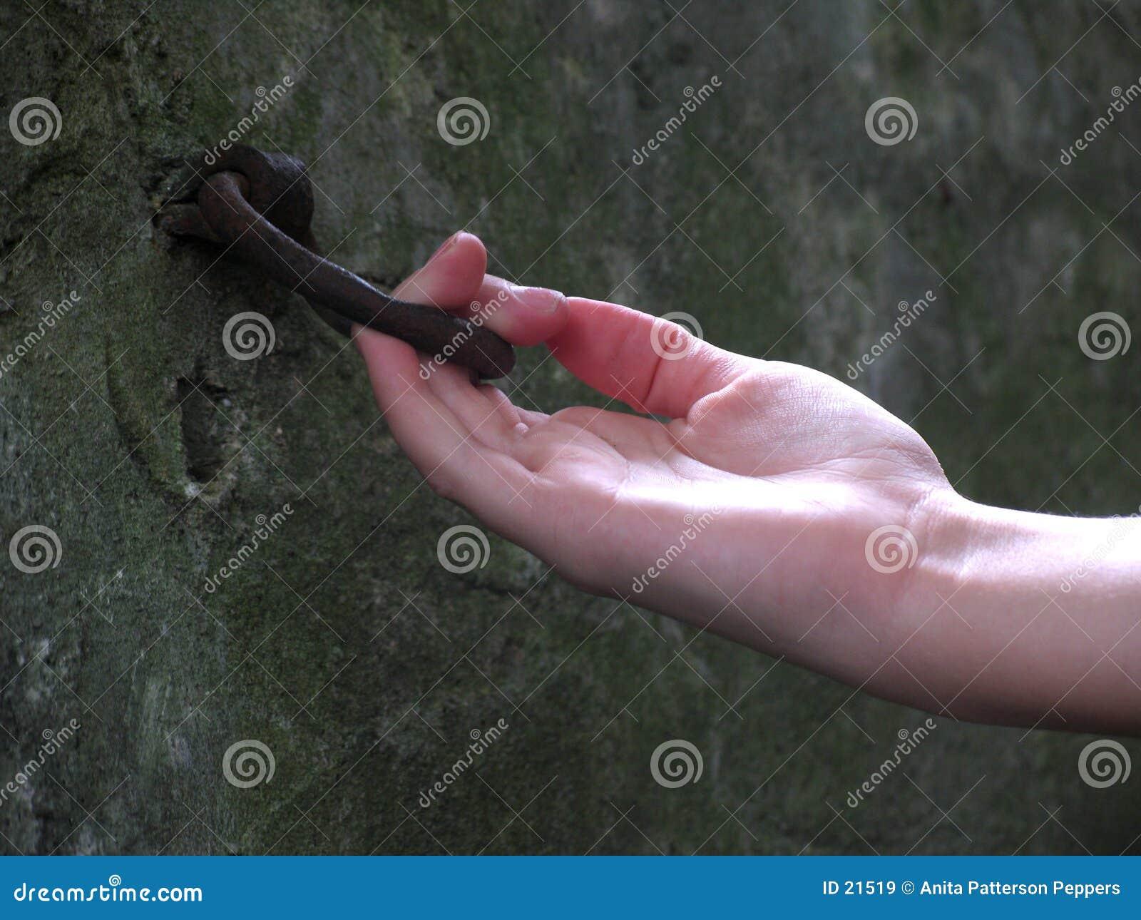 прицепляя кольцо лошади