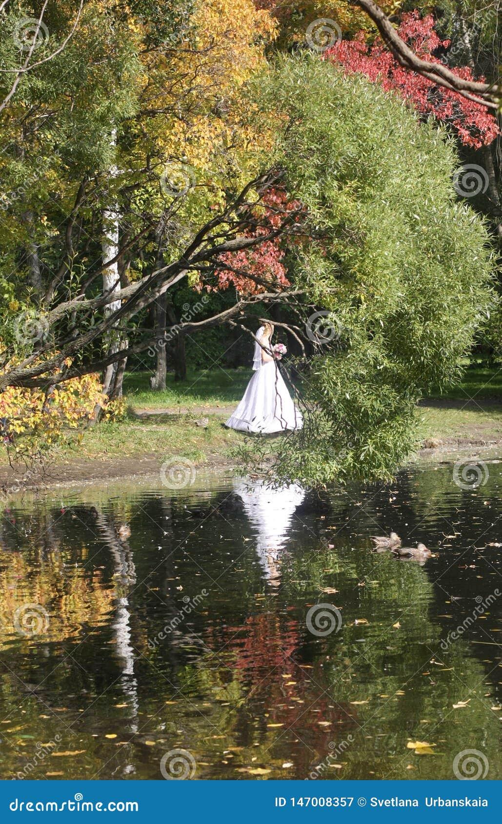 Прогулка в парке осенью отражение в воде Невеста