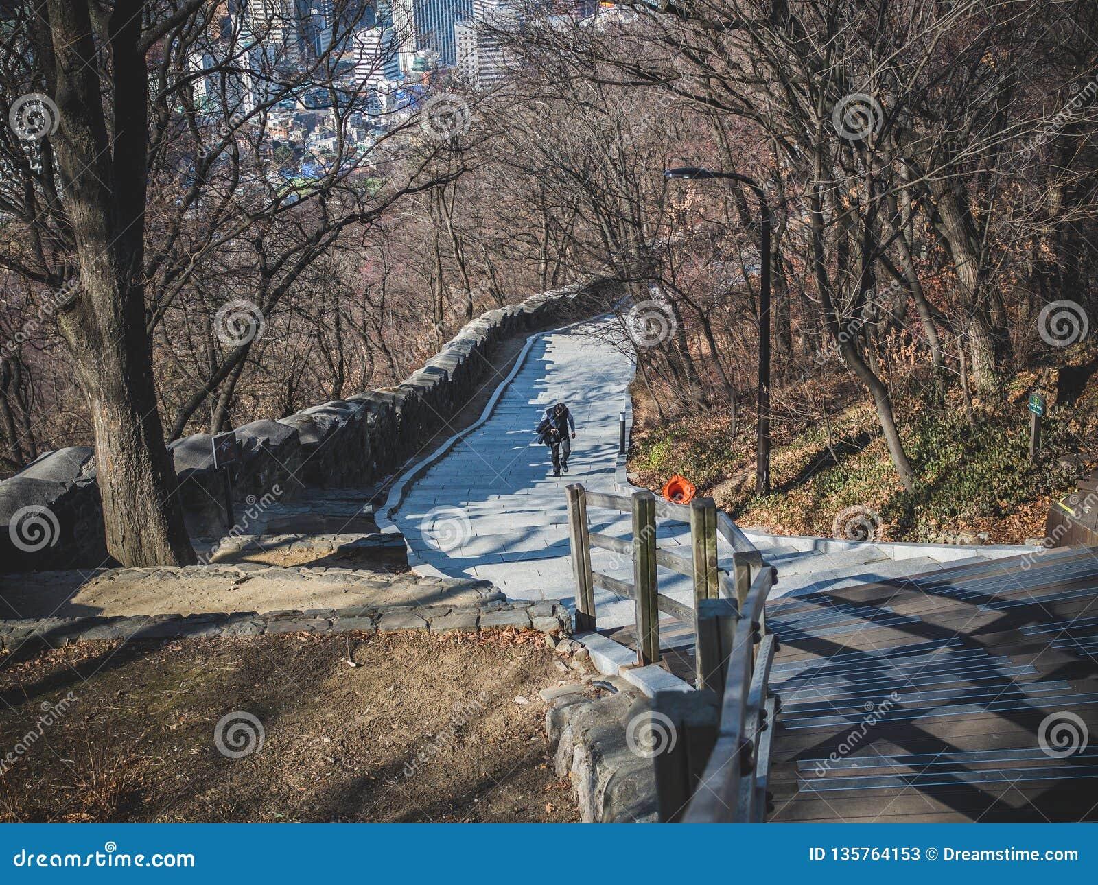Прогулка идя к верхней части башни Namsan