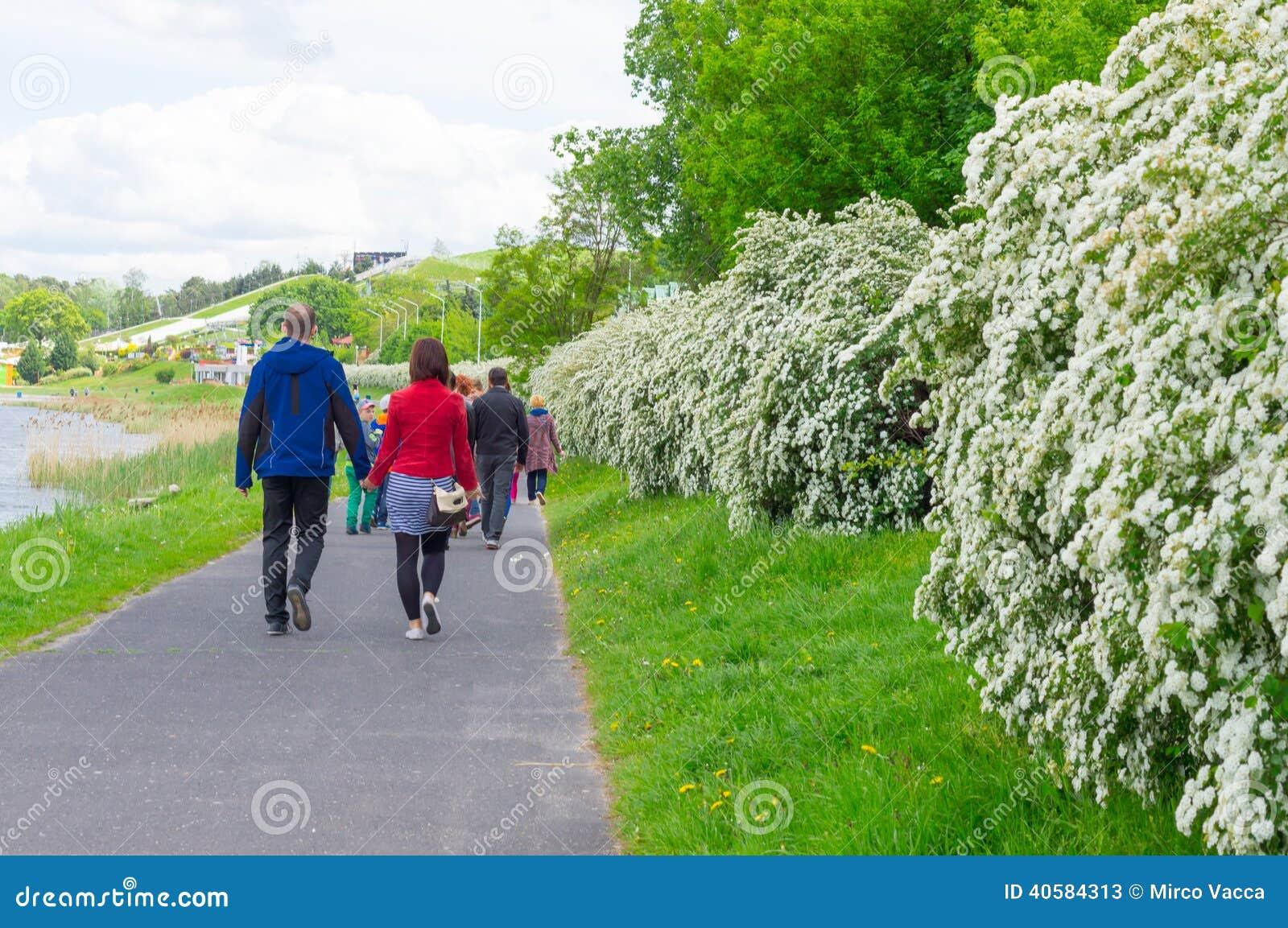 Прогулка парка весны