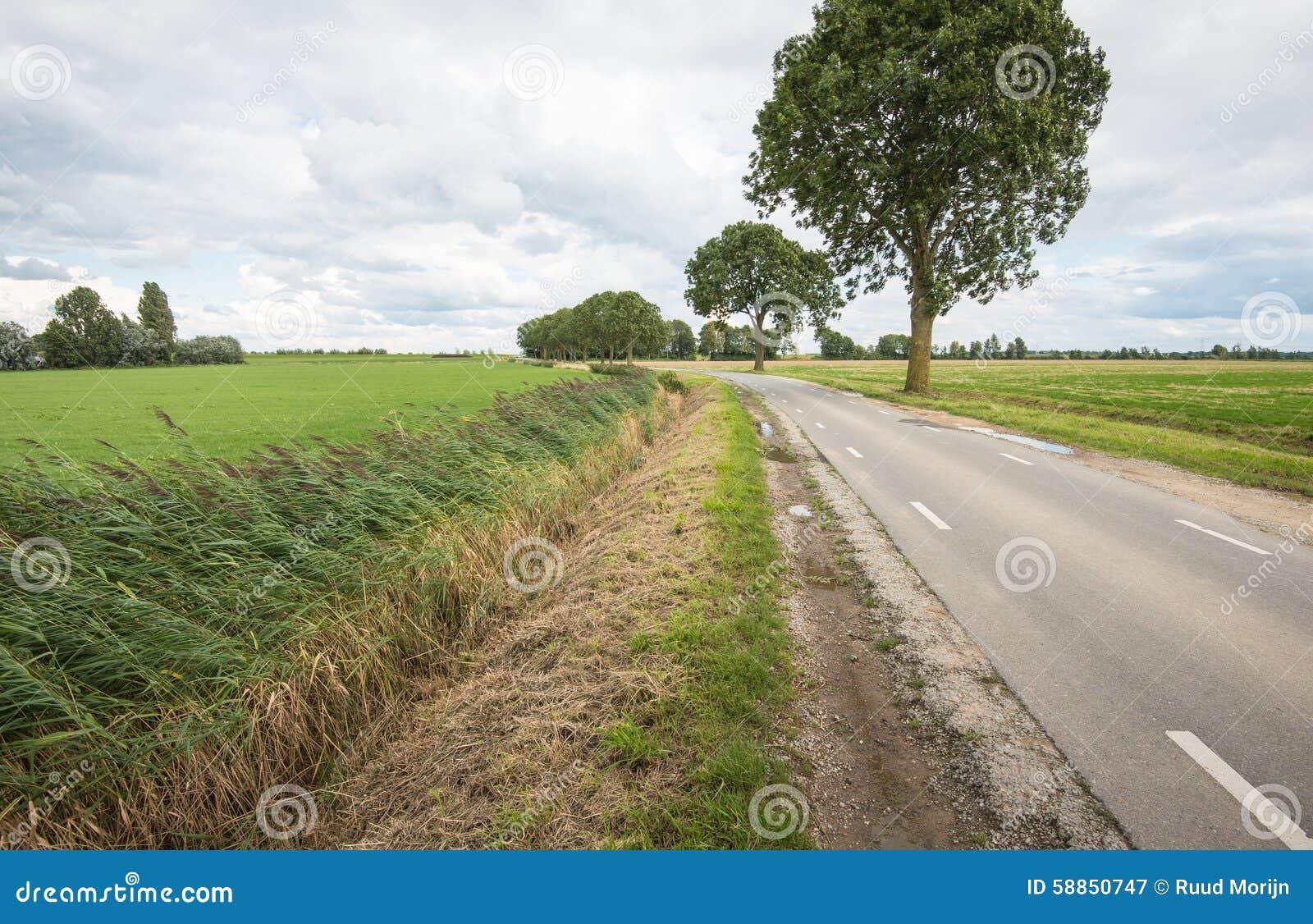 Проселочная дорога на бурный день в лете