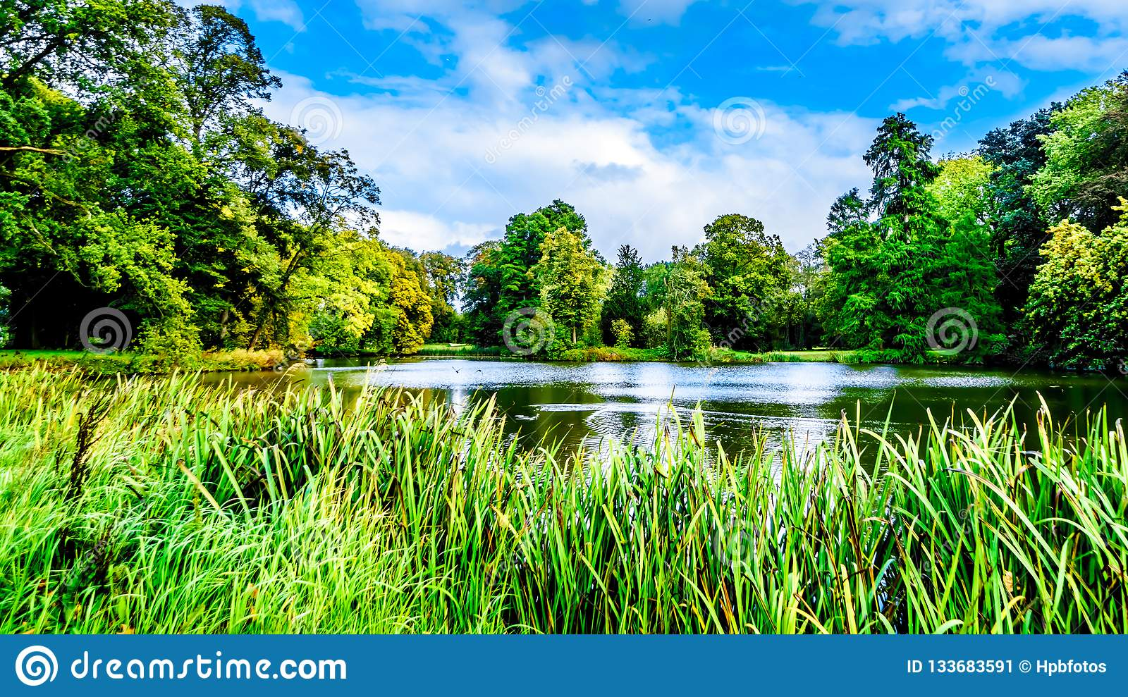 Пруды и озера в парках окружая Замок De Haar