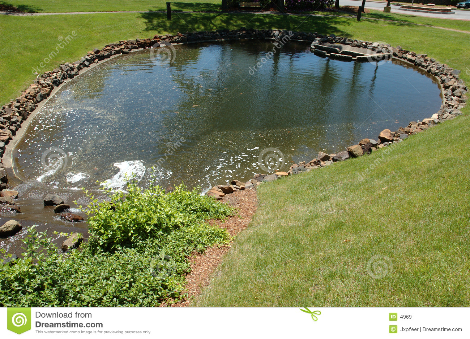пруд парка