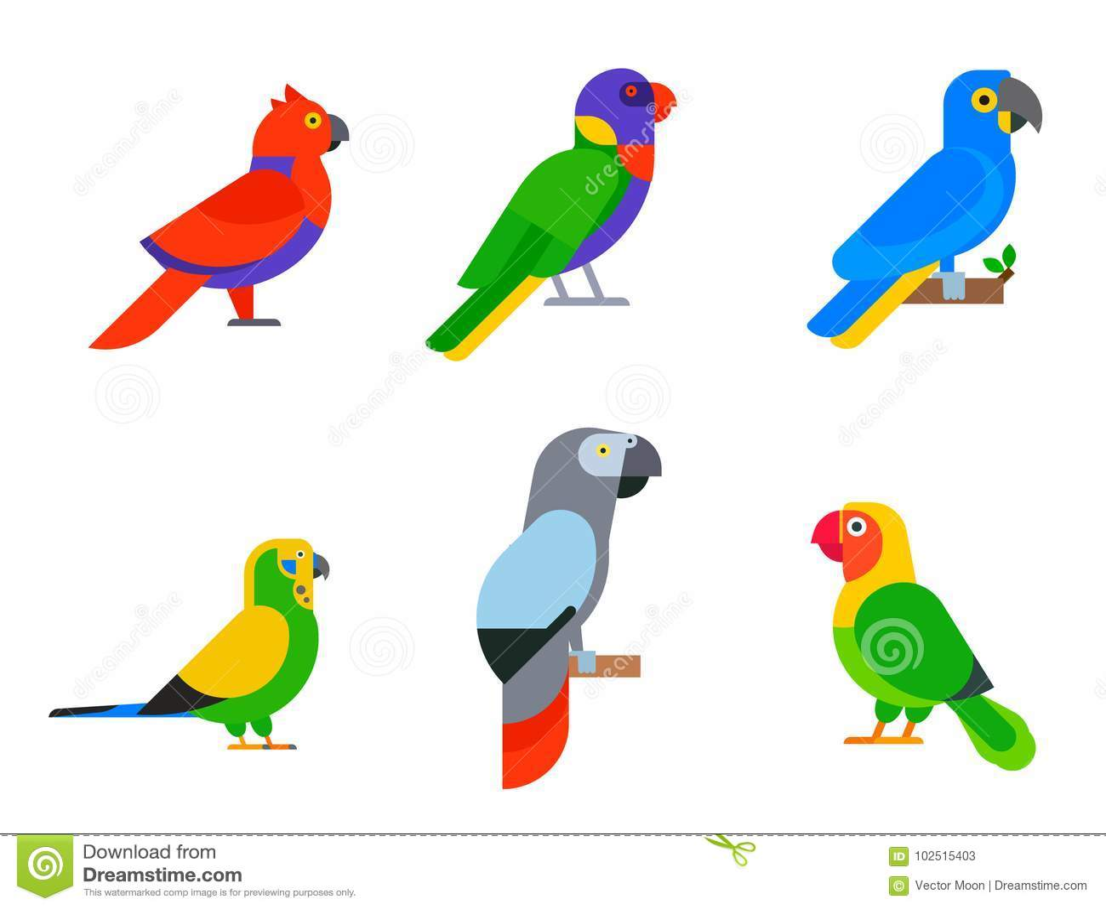 Птицы попугаев разводят длиннохвостые попугаев животной природы вида тропические
