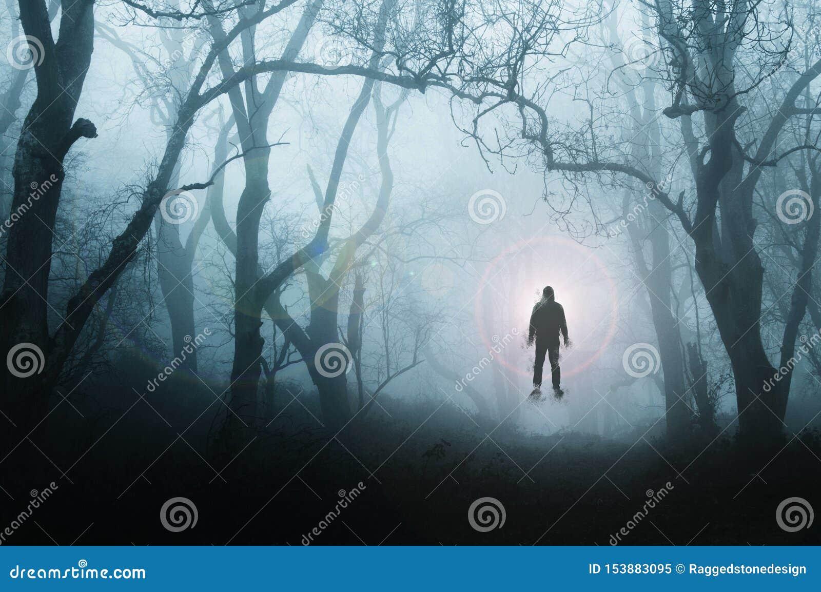 Пугающий, жуткий лес в зиме, с человеком плавая против яркого света, с деревьями silhouetted туманом С приглушать, голубой