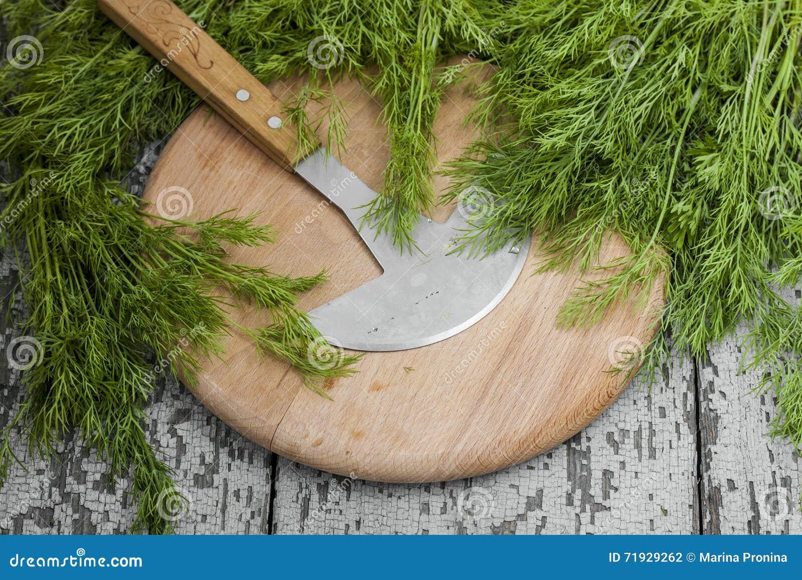 Пук свежего органического укропа