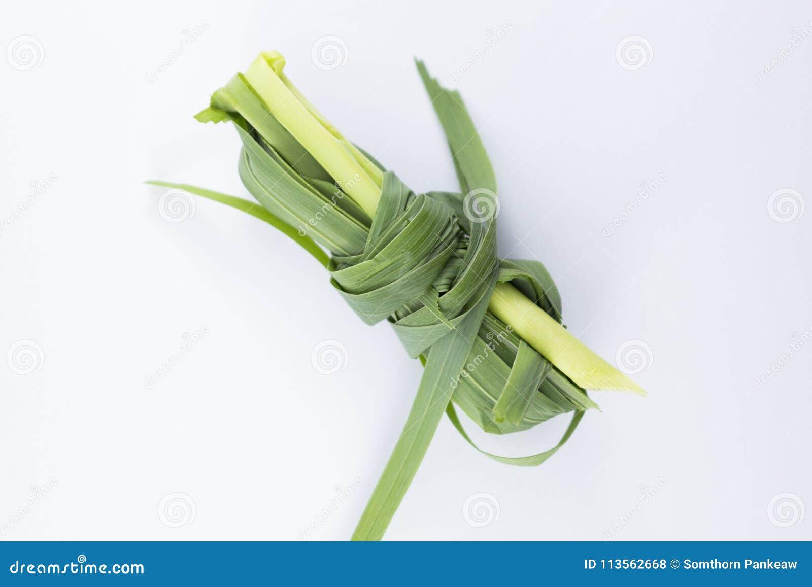 Пук травы лимона на белой предпосылке