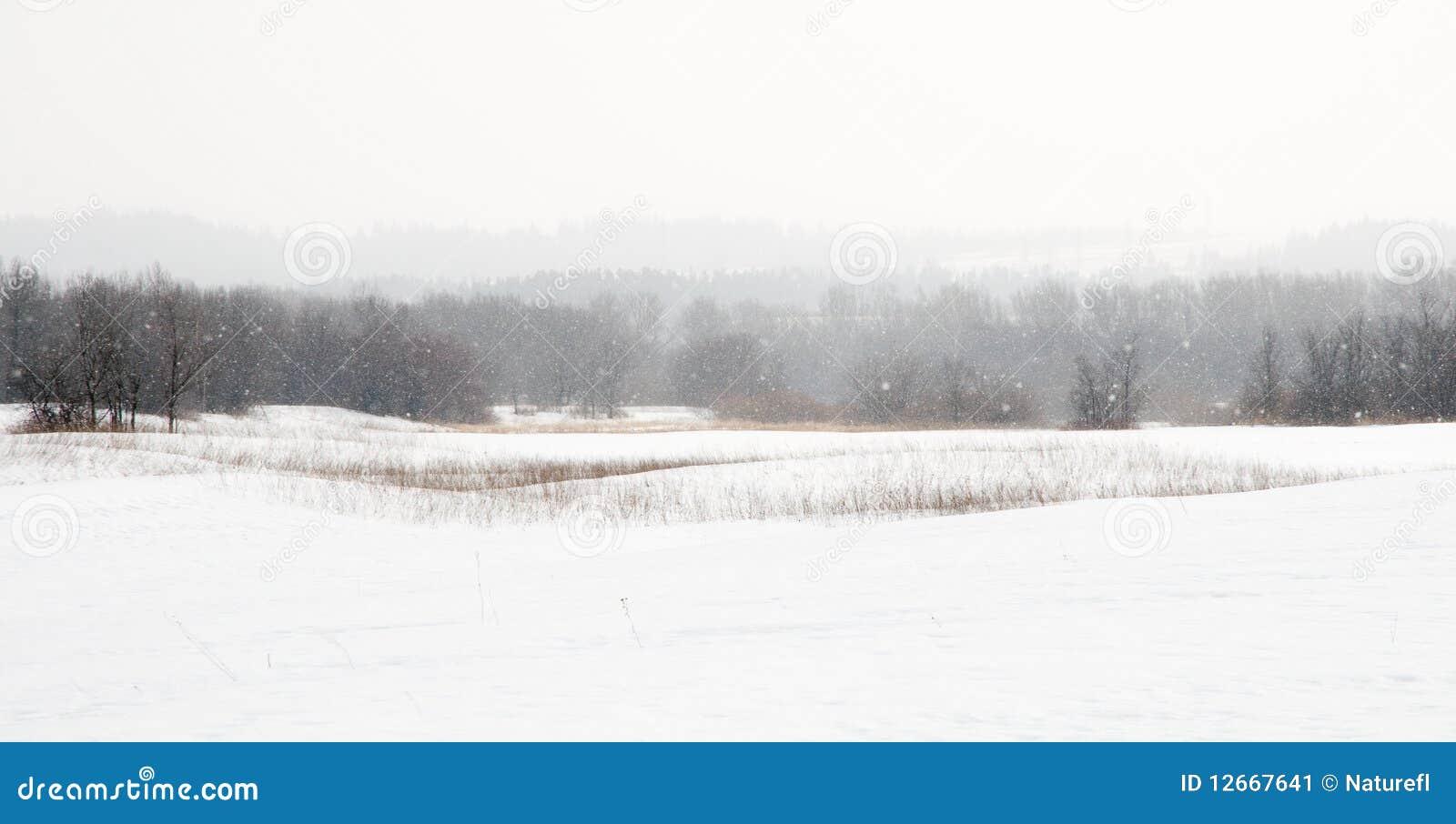 пурга snowfield