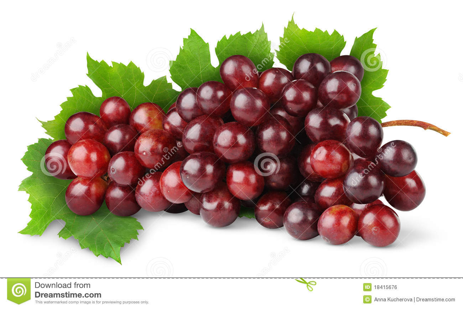 пурпур виноградины