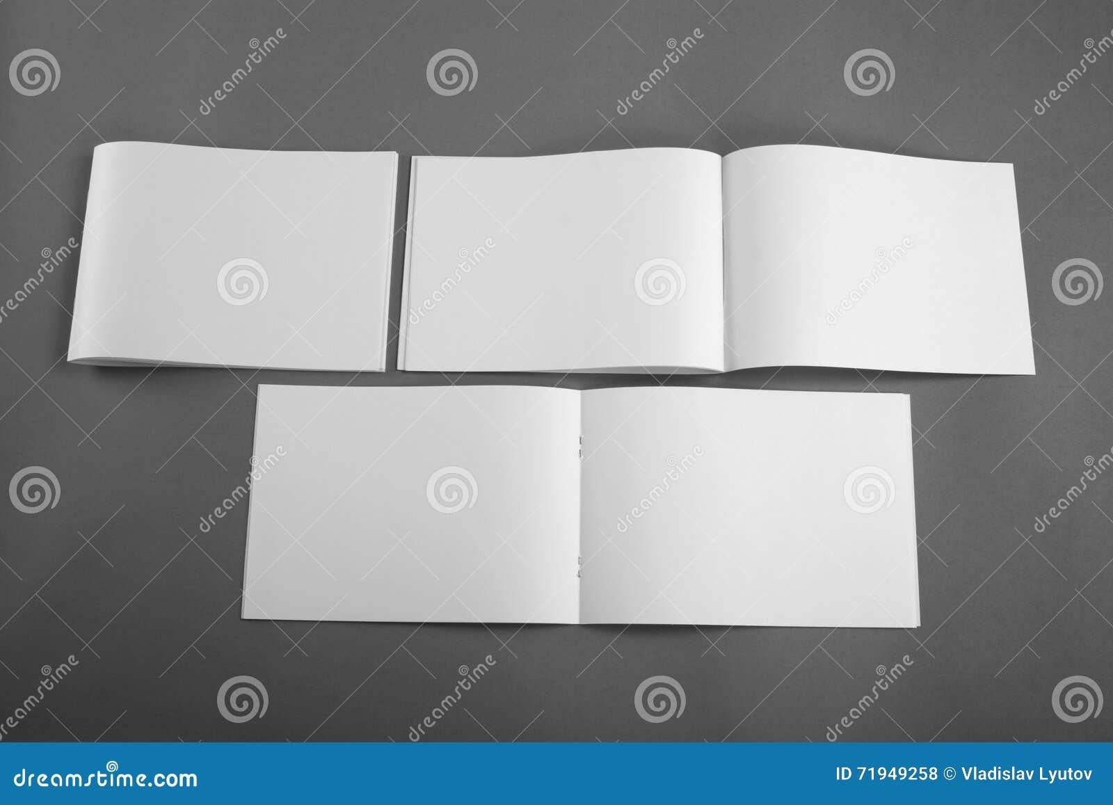 Пустой каталог, брошюра, кассеты, насмешка книги вверх