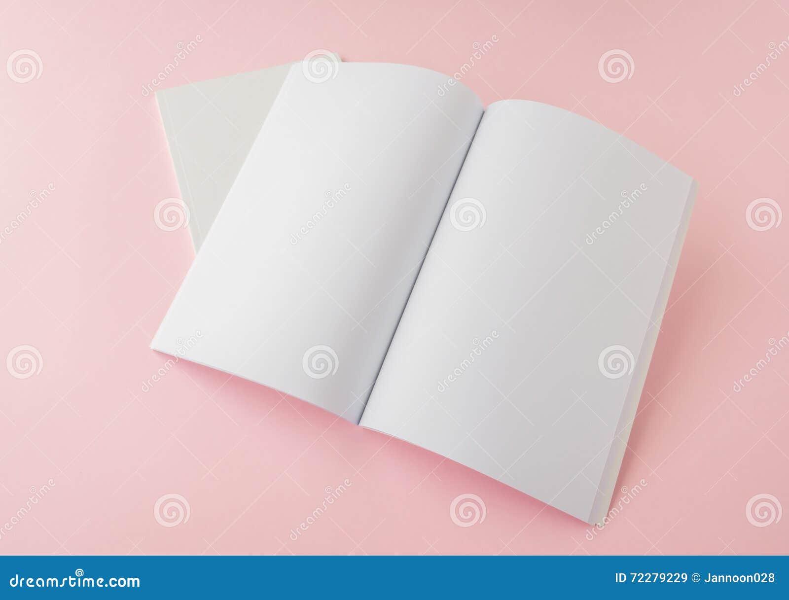 Download Пустой каталог, брошюра, кассеты, насмешка книги вверх Стоковое Изображение - изображение насчитывающей бумага, образование: 72279229