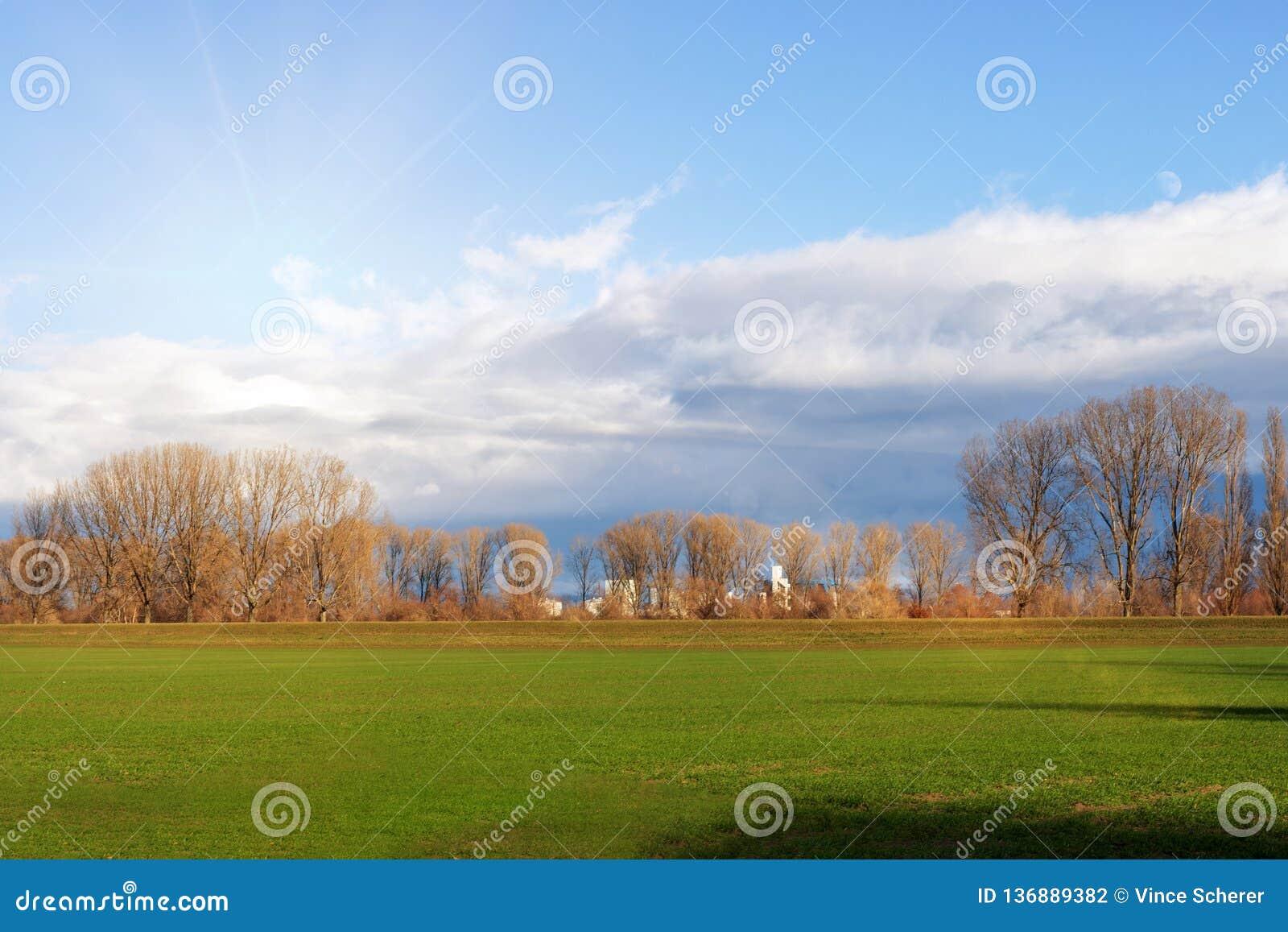 Пустые поля в зиме в сельской местности природа в Frankenthal - Германии