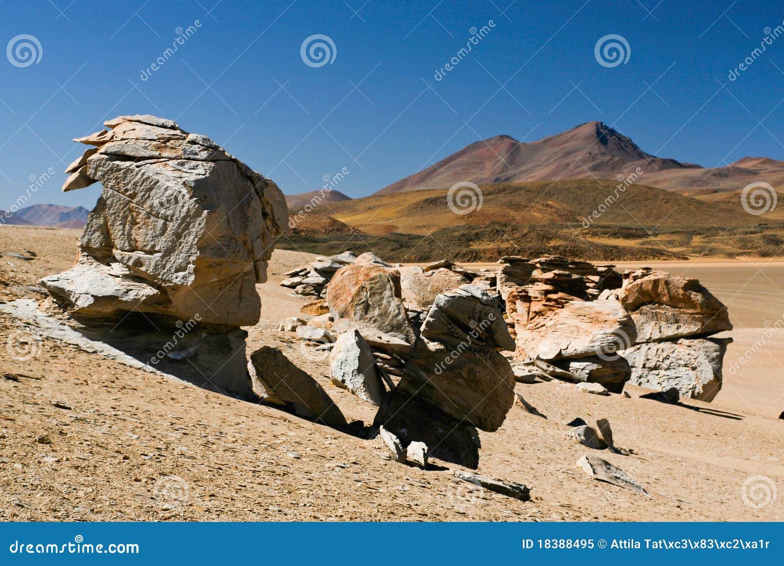 пустыня dali