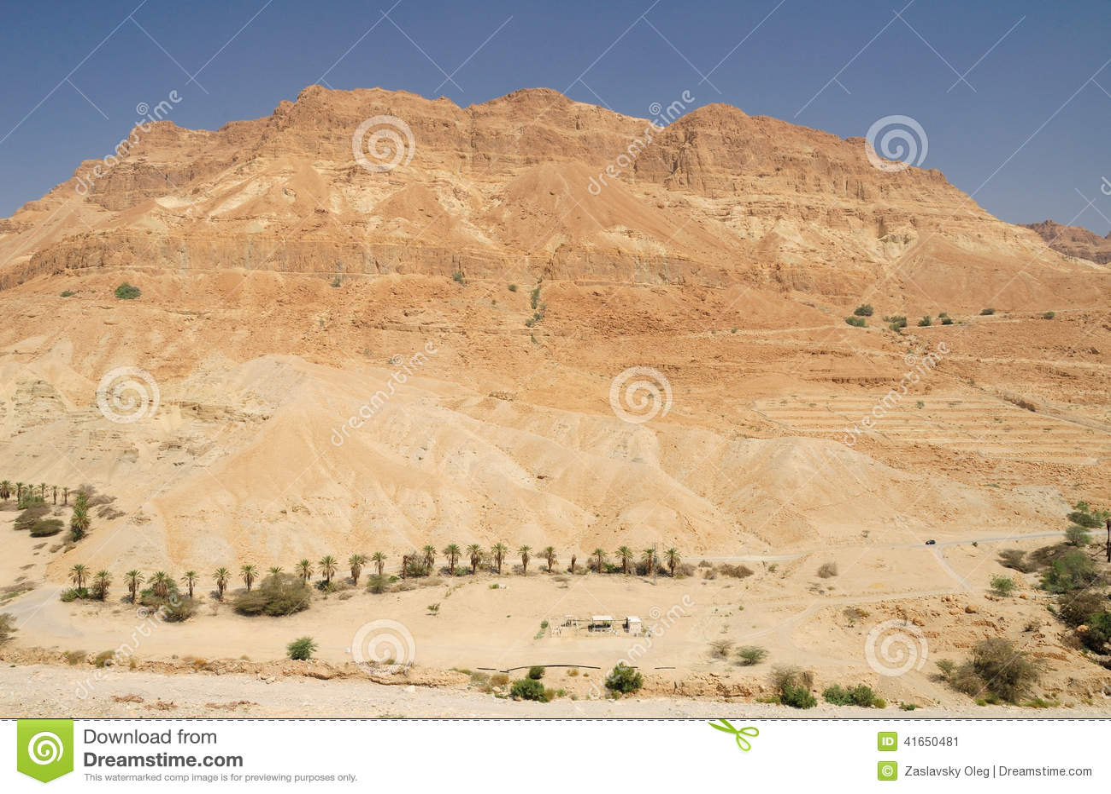 пустыня judean