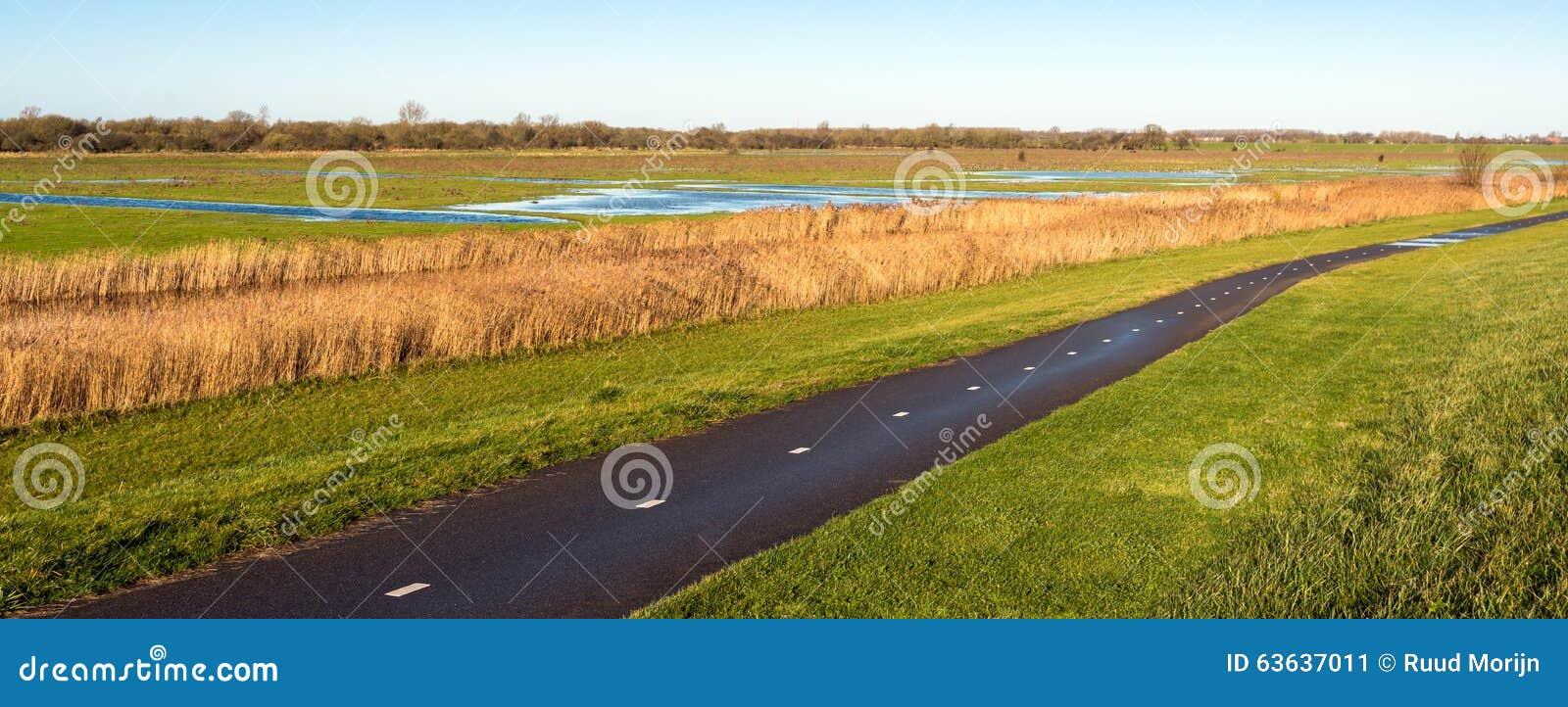 Путь велосипеда рядом с голландскими заболоченными местами в осени