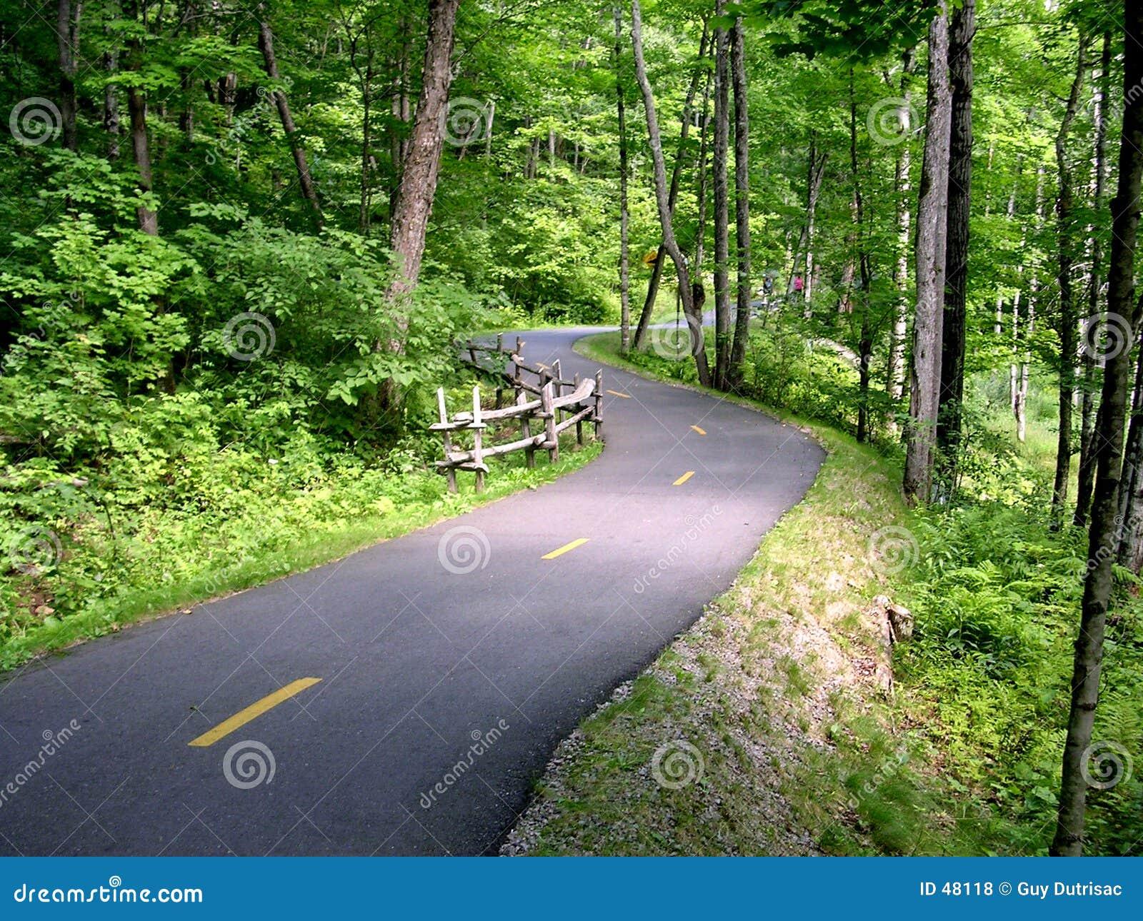 путь bike