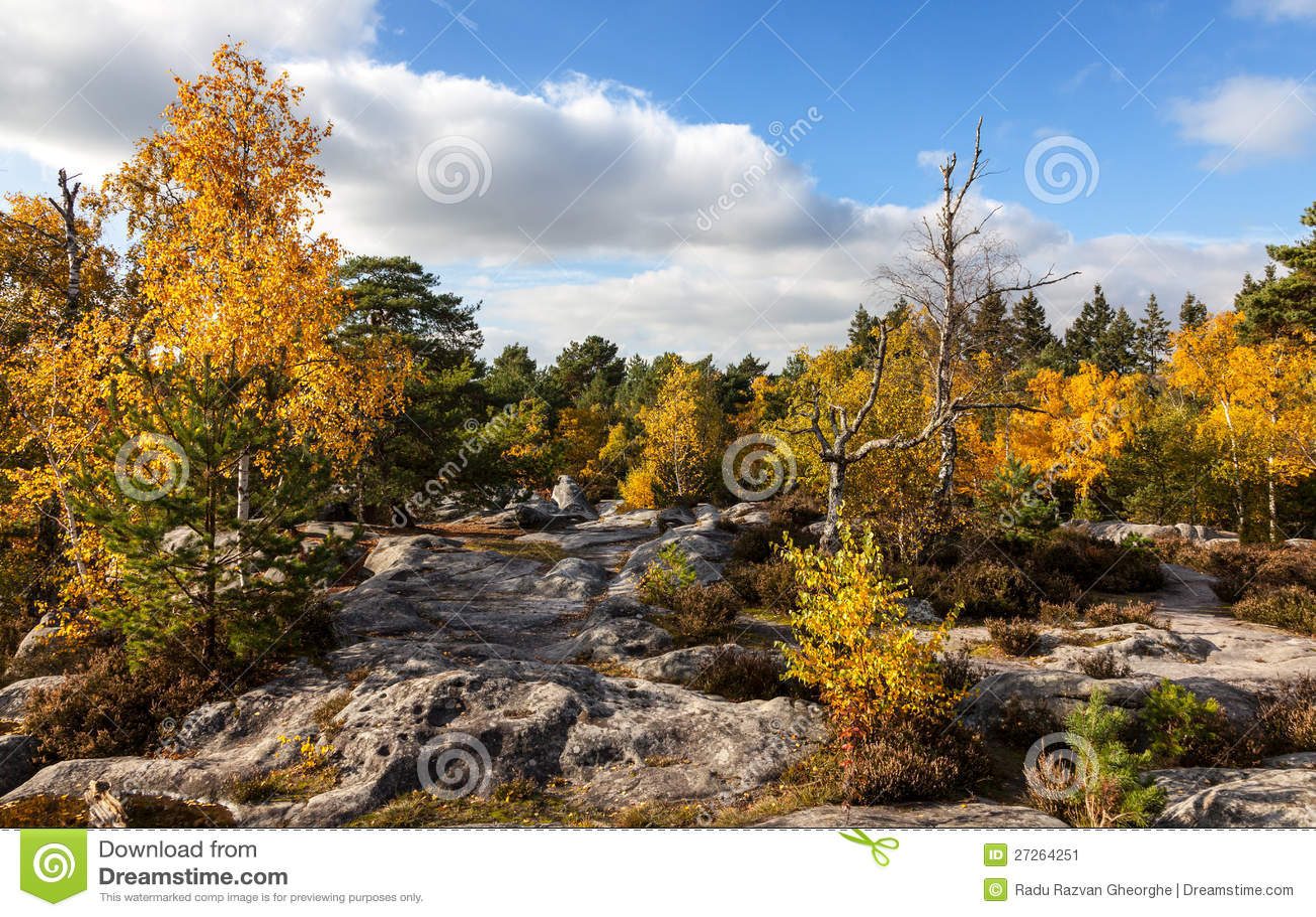 Пуща Fontainebleau