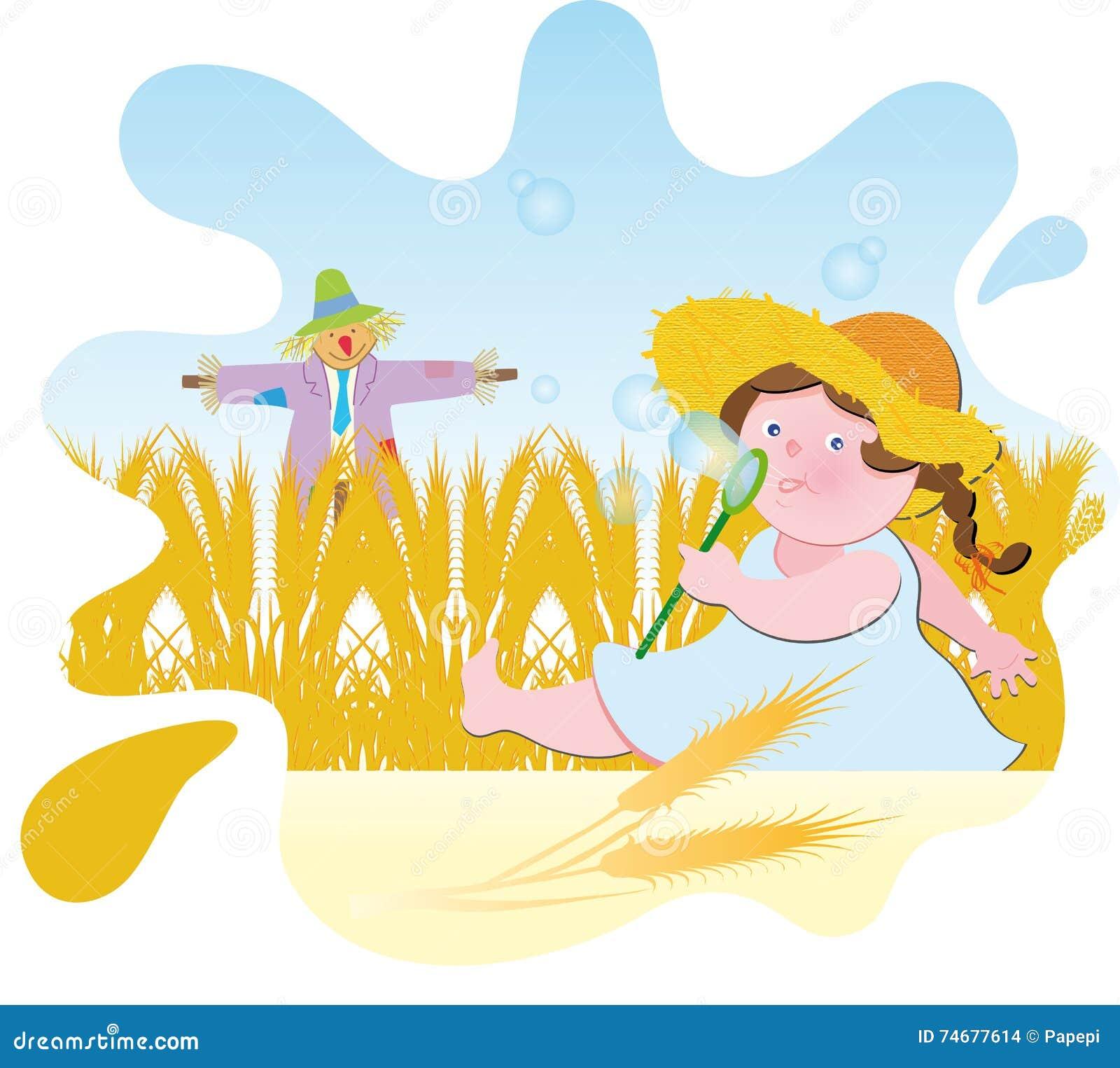 пшеница лета поля дня горячая