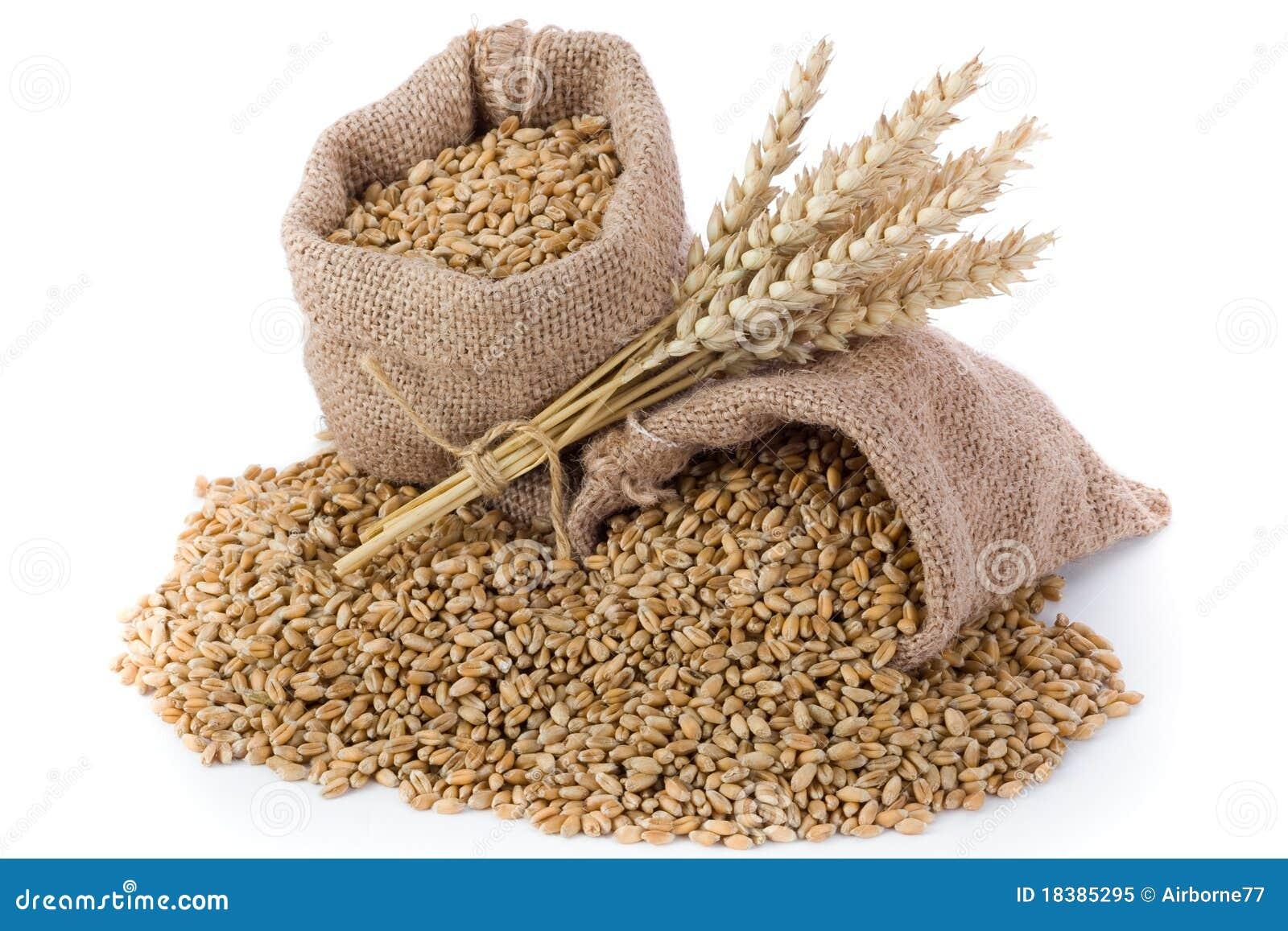 пшеница зерна