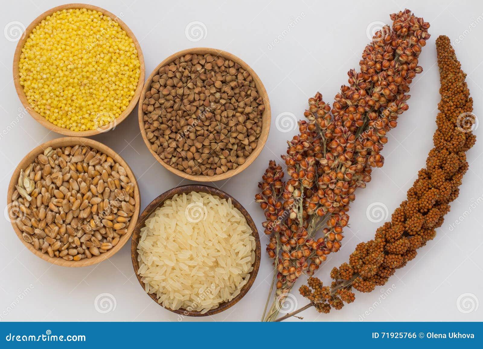 Пшено хворостины красные и сорго, гречиха зерна, пшено, рис