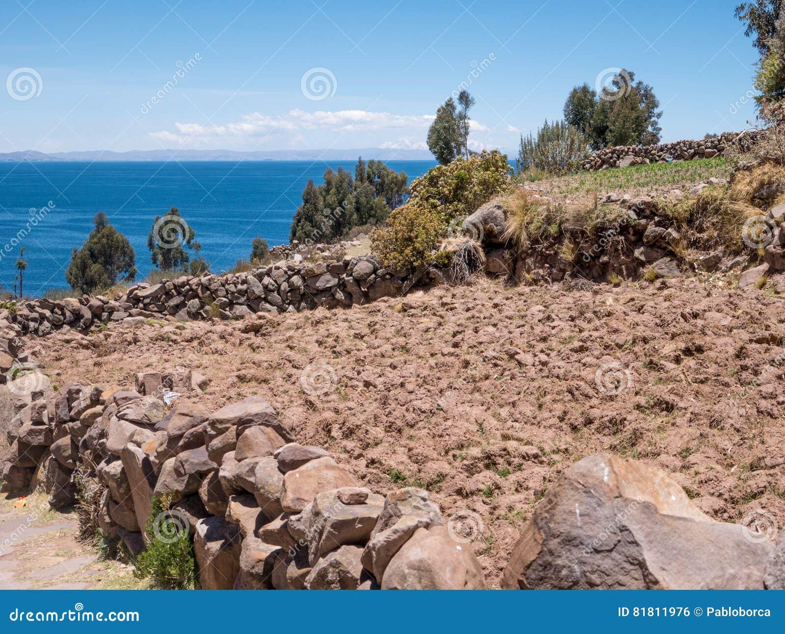 Плантация мозоли на озере Titicaca от острова Taquile