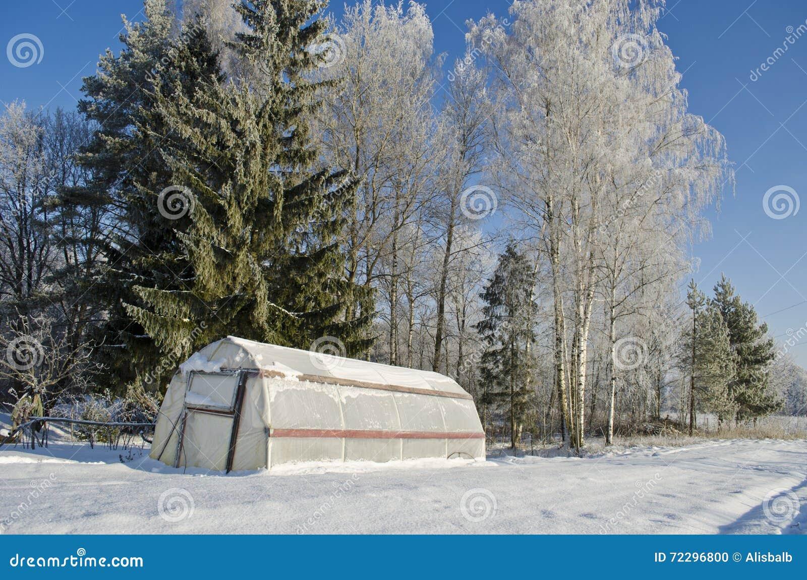 Download Пластичная оранжерея парника в ферме зимы Стоковое Фото - изображение насчитывающей свет, серо: 72296800