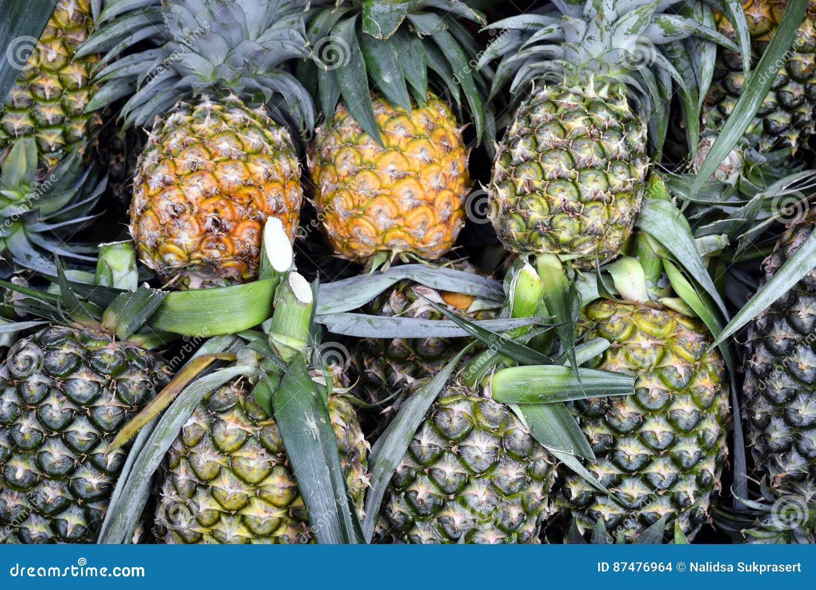 Плодоовощ ананаса тропический