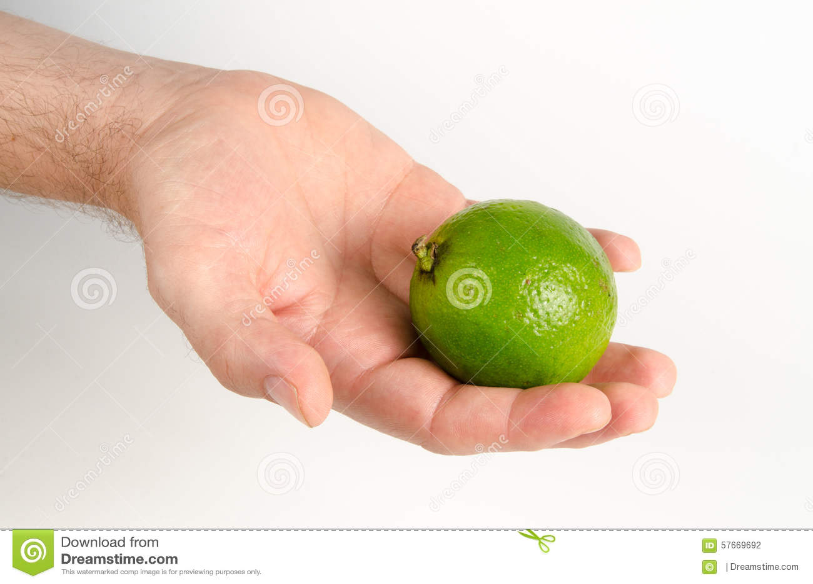 Плодоовощ известки