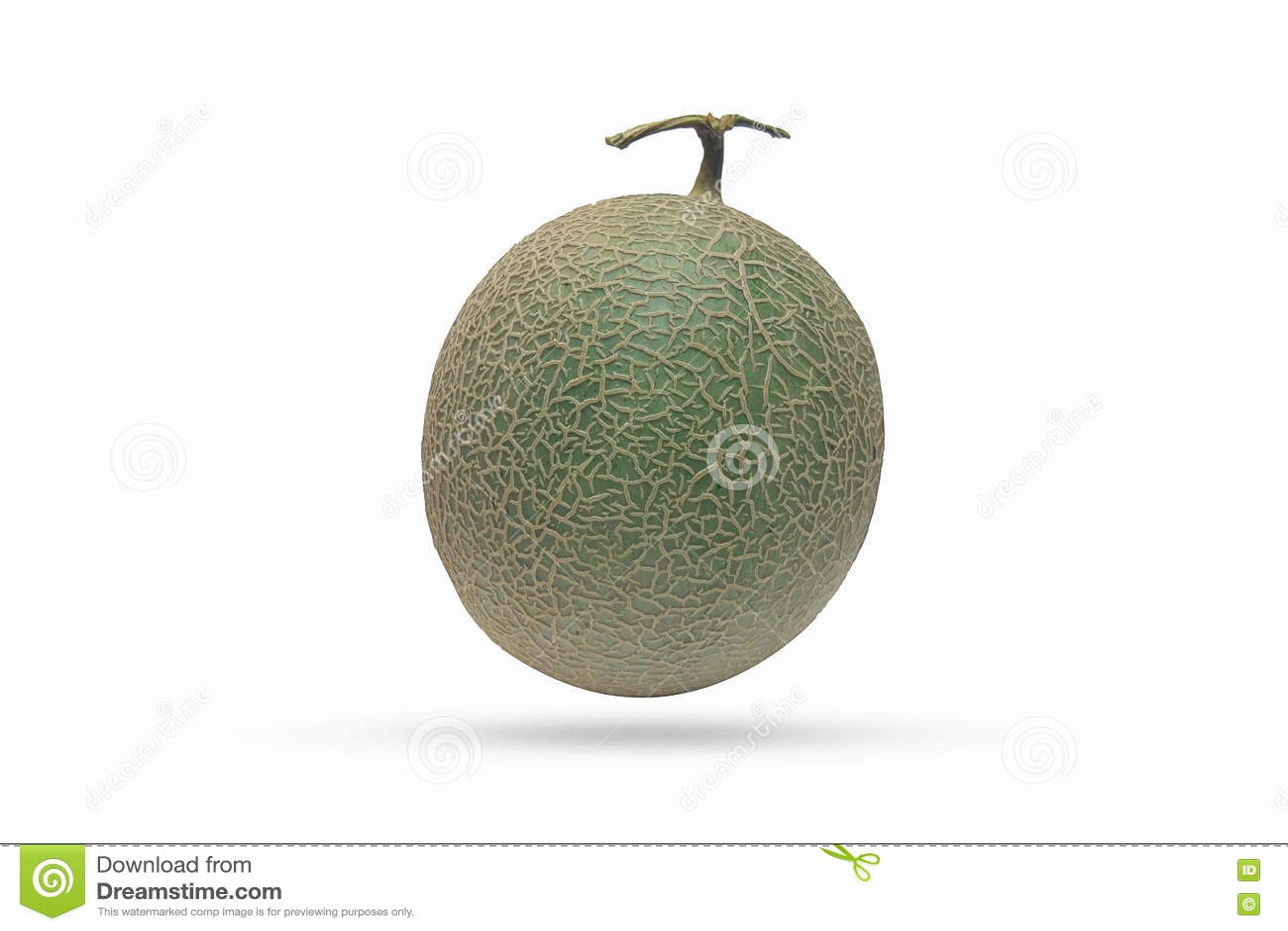 Download Плодоовощ дыни изолированный на белой предпосылке Стоковое Фото - изображение насчитывающей конструкция, художничества: 72278846