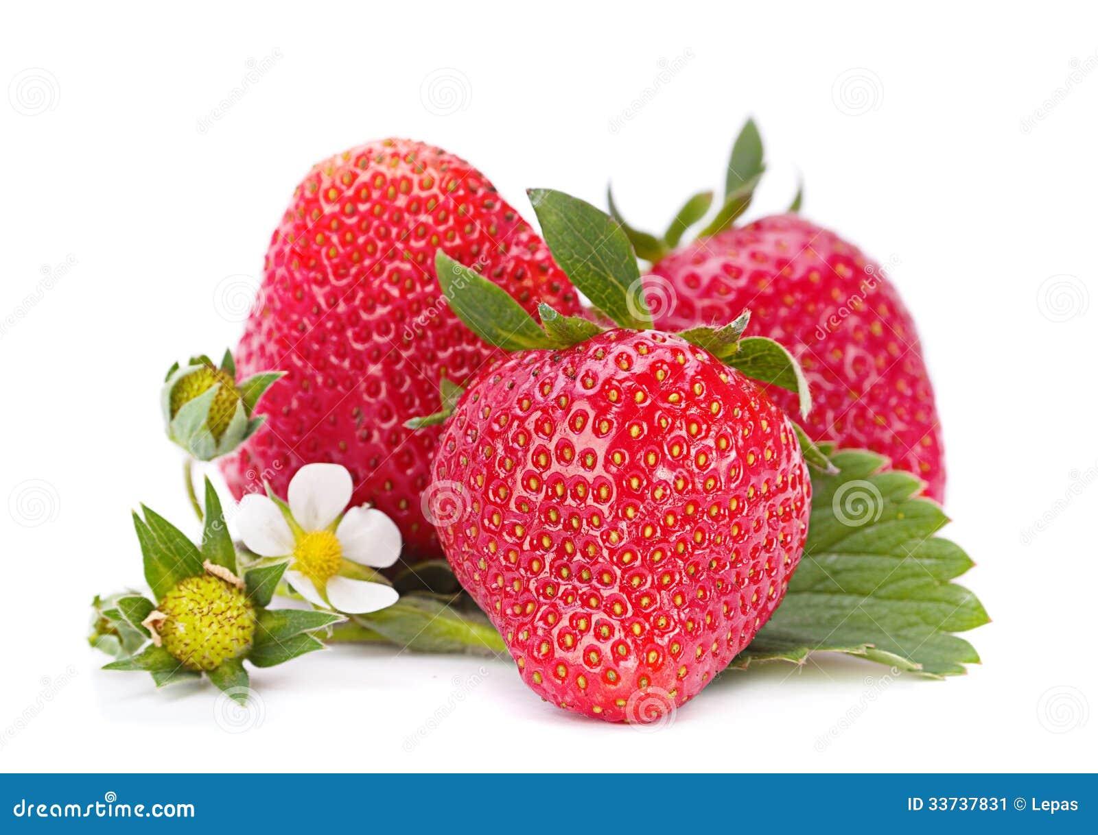 Плодоовощ Strawberris