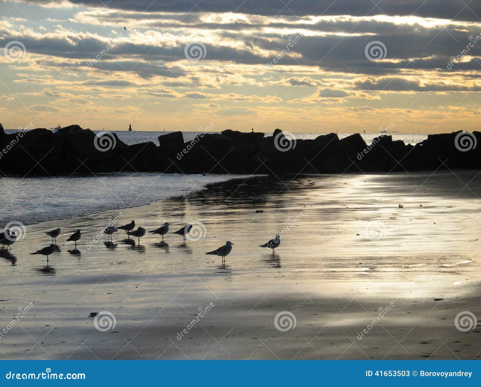 Пляж и небо захода солнца New York