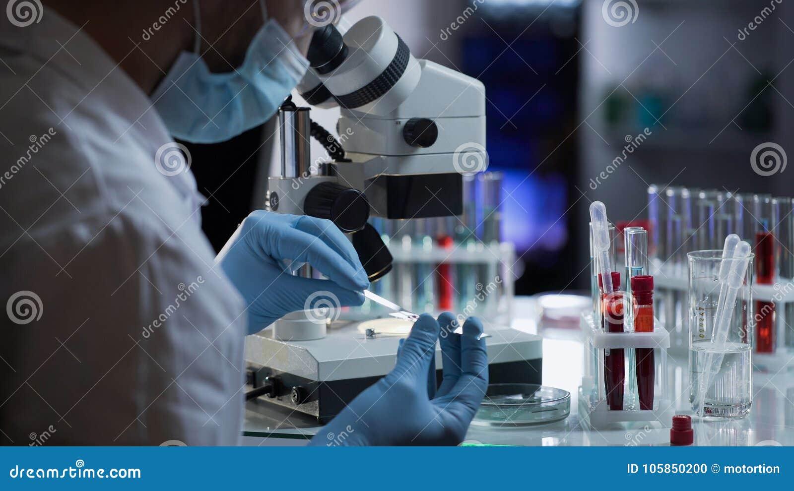 Работник лаборатории подготавливая стекло с кровью для обнаружения антител и инфекций