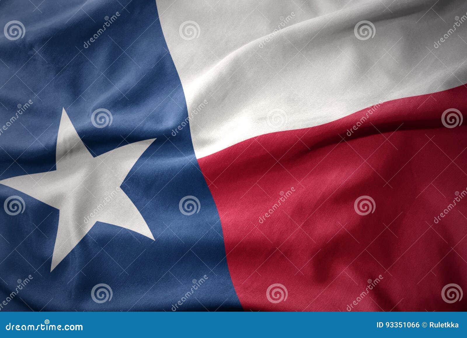 Развевая красочный флаг положения Техаса