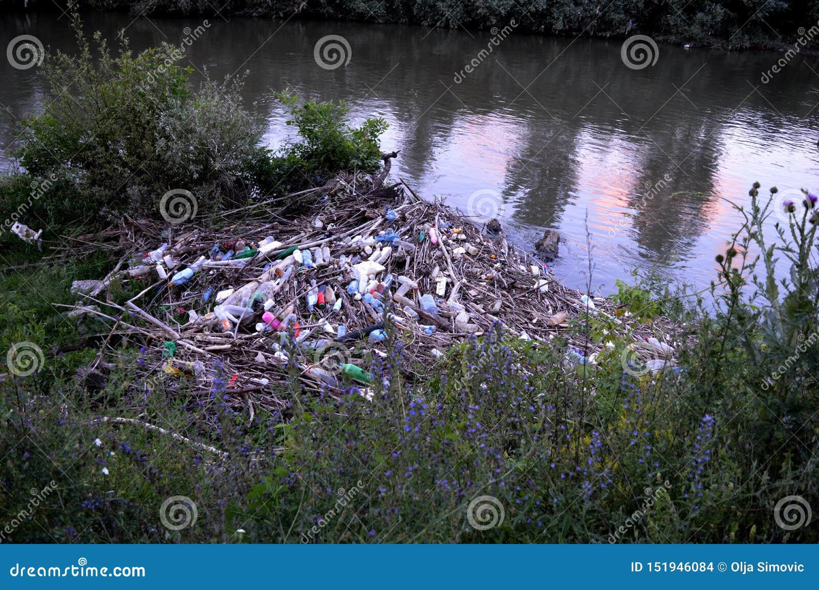 Разнообразие погани рекой
