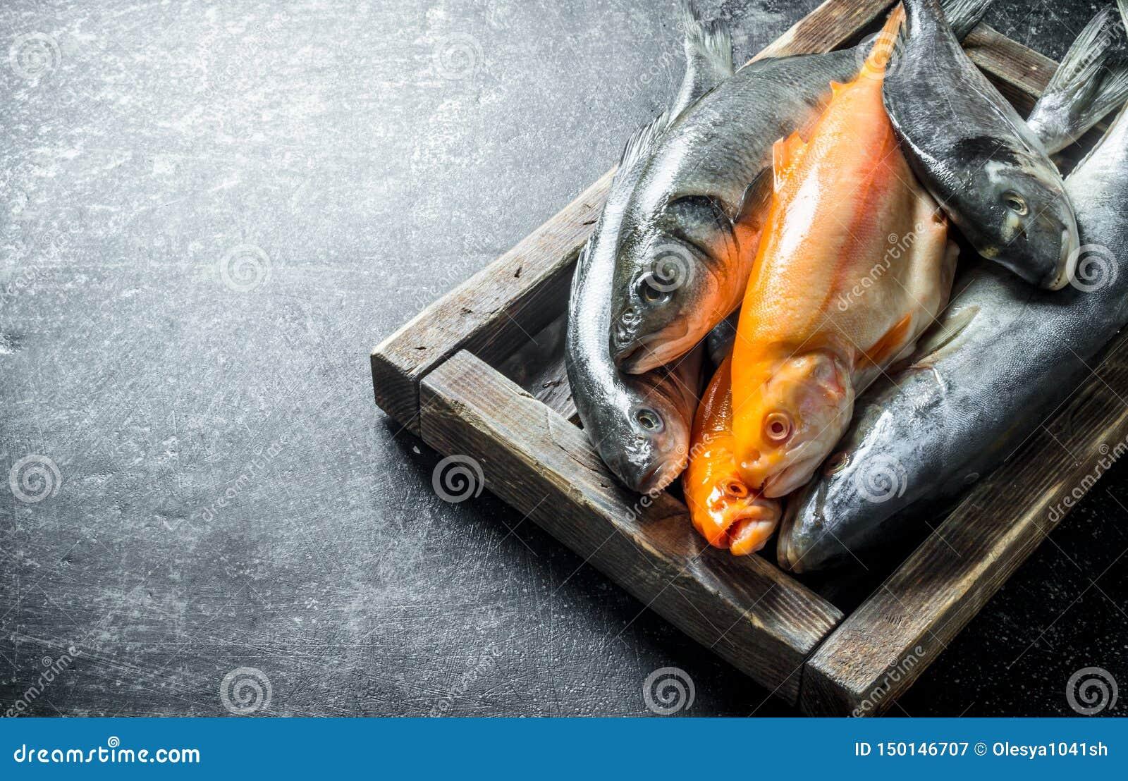 Разнообразие свежие рыбы на подносе