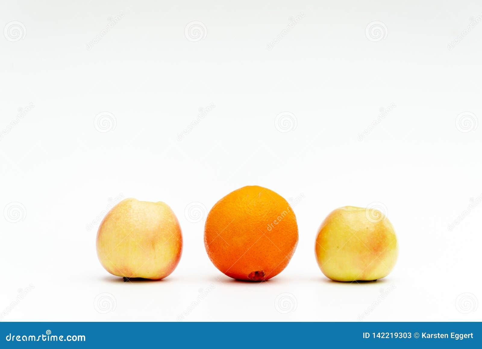 Разные виды плода символизируют разнообразие