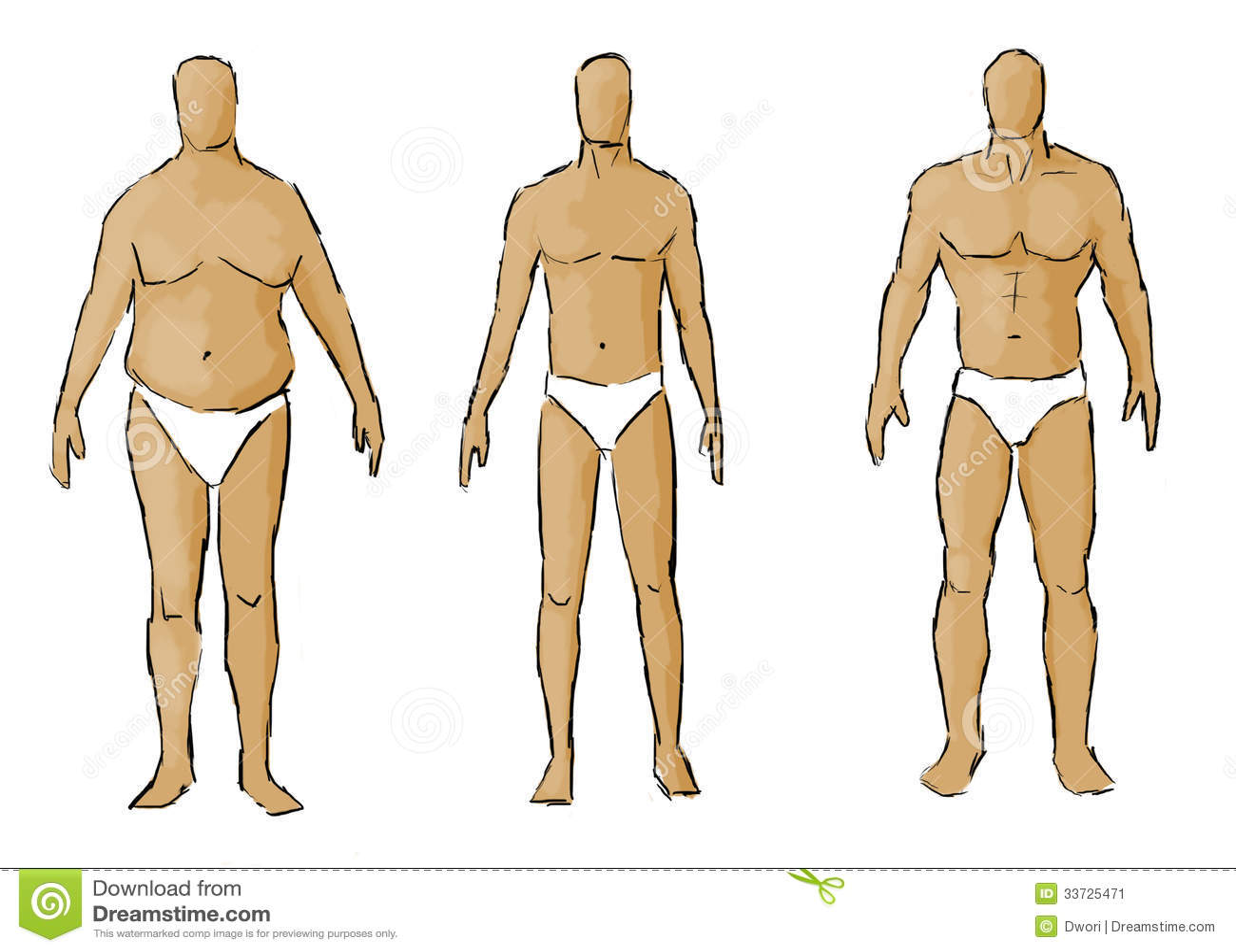 Различные типы телосложения