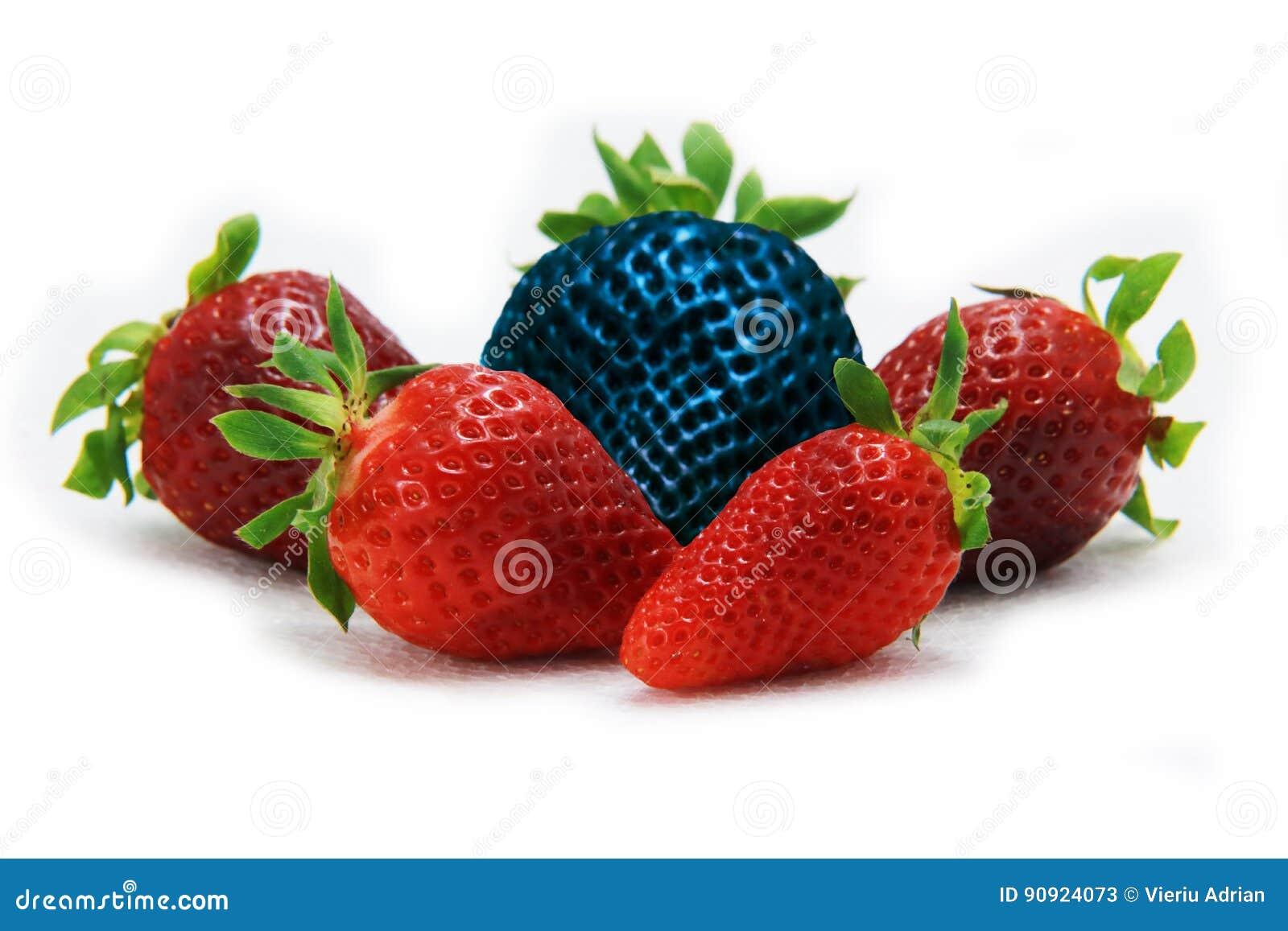 Различный чем клубника остатков одна голубая Концепция для genetically доработанной еды